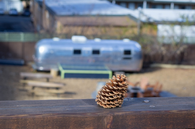 Gennifer Rose - Hotel Review: Basecamp in Tahoe