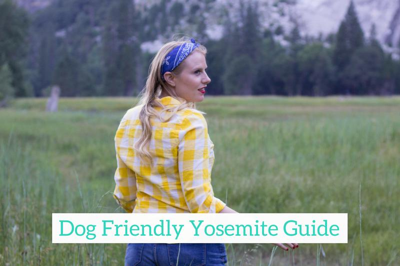 Dog Friendly Yosemite Guide