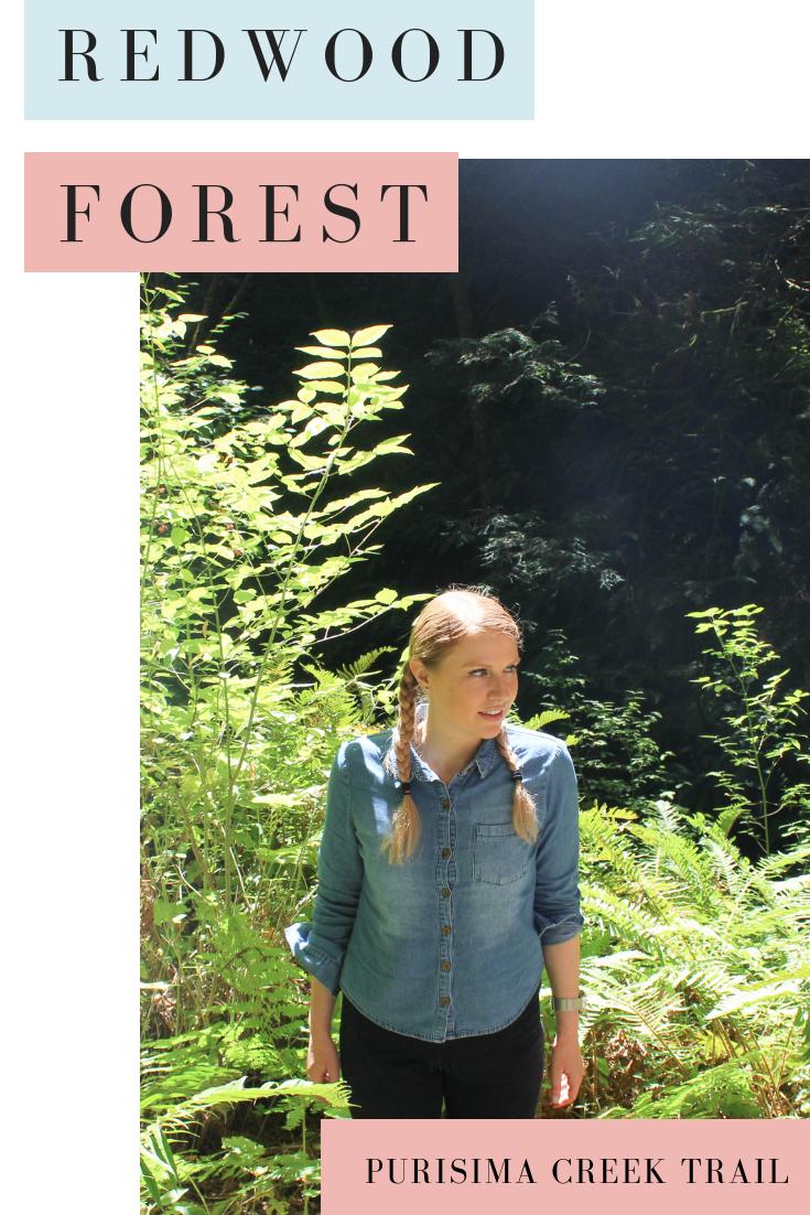 Purisima Creek Redwood Reserve