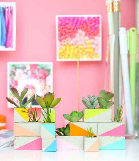 Mini Succulent Garden for your Office or Desk By Kailochic