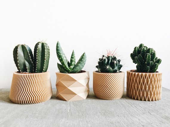 Set of 4 Mini Wood Cactus & Succulent Planters By MinimumDesign