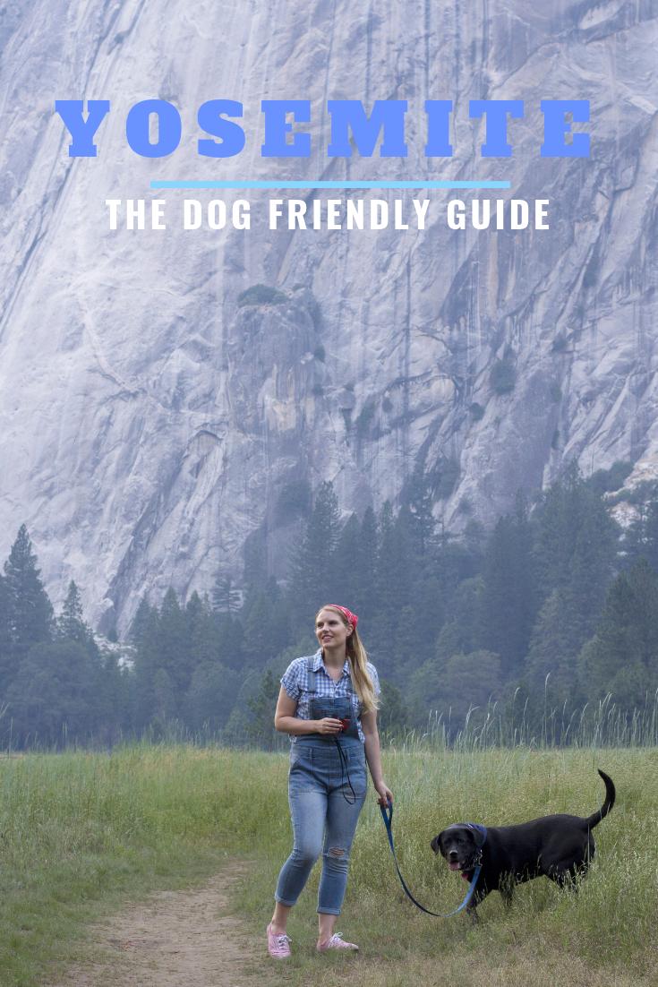 Dog Friendly Travel Guide to Yosemite