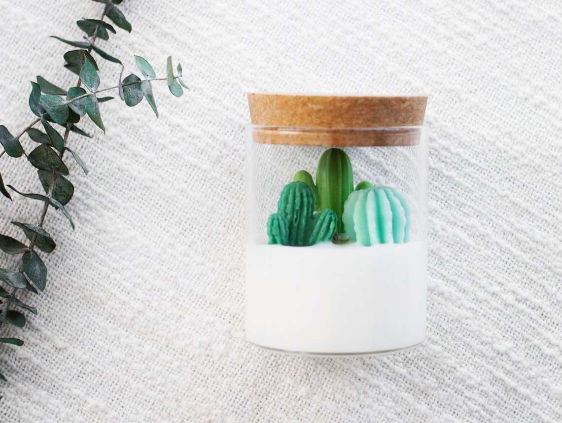 3-piece Cacti Soy Candle By ZoetStudio