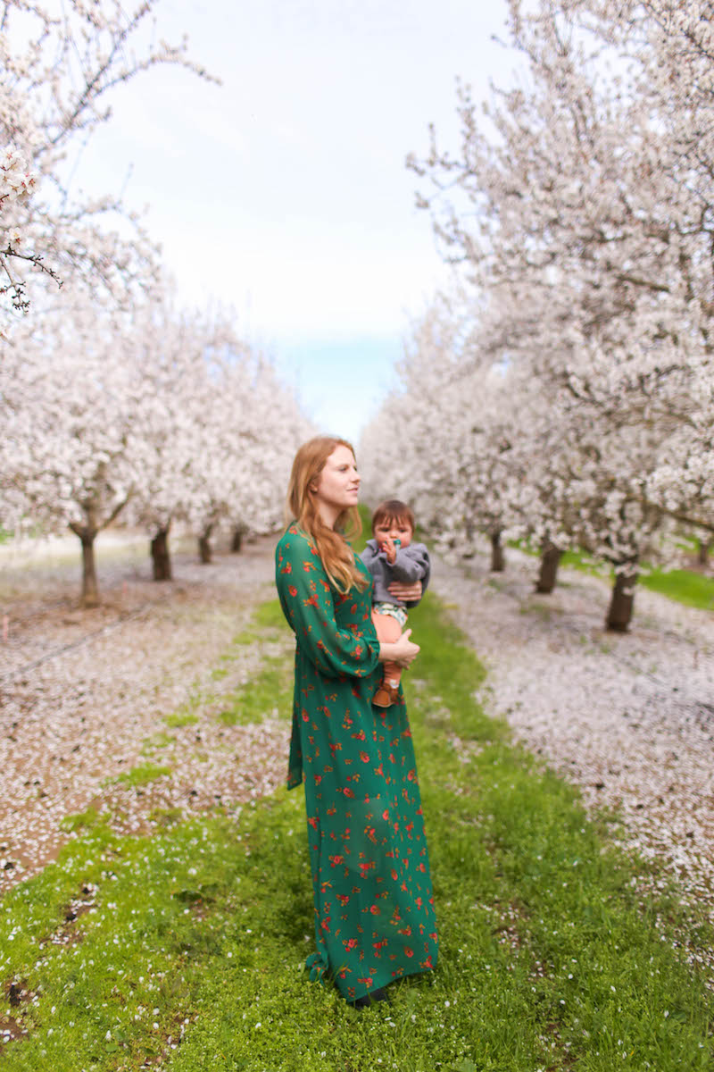 Gennifer Rose_Where to Find the Blooming Almond Orchards in Northern California_2.jpg