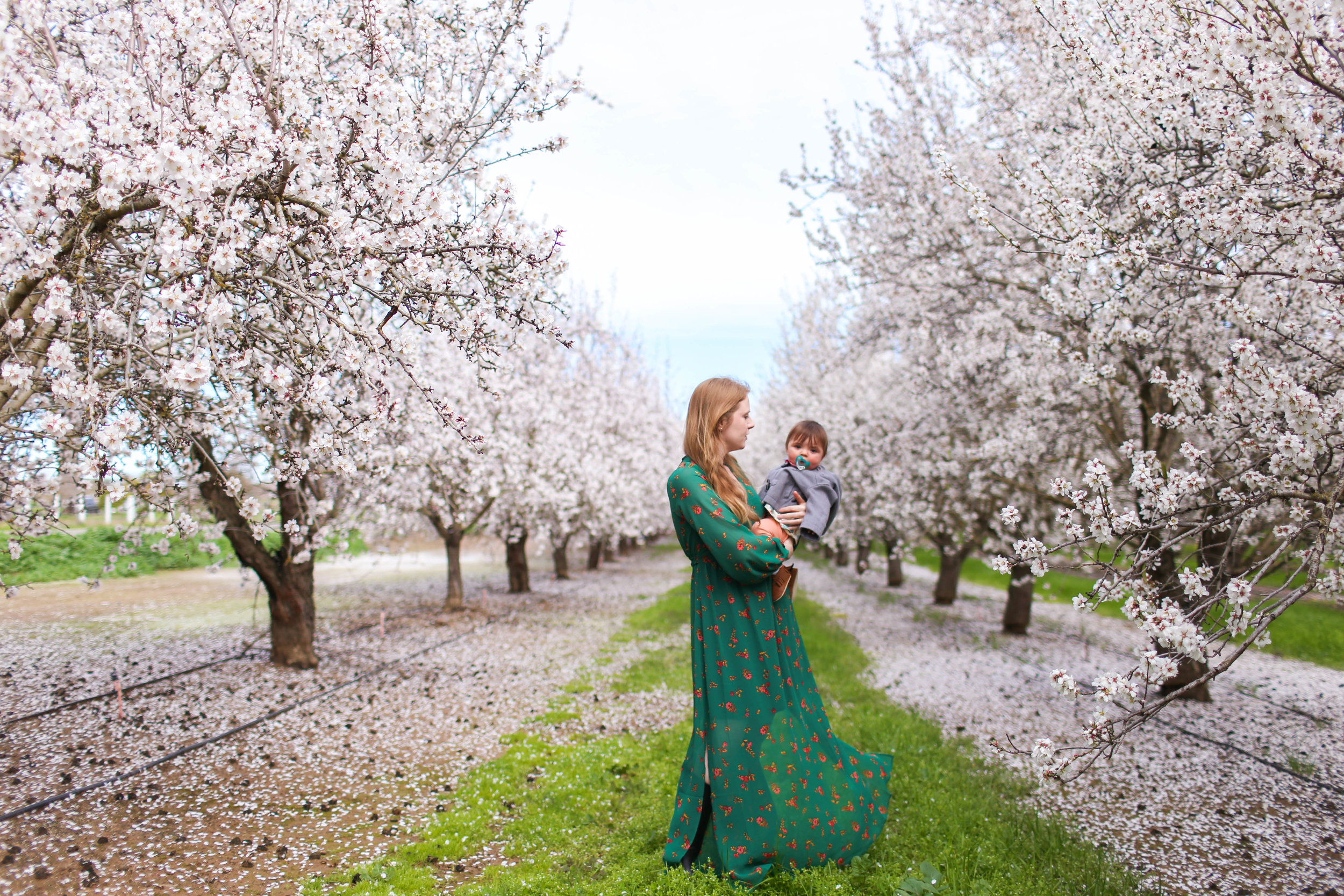 Gennifer Rose_Where to Find the Blooming Almond Orchards in Northern California_9.jpg