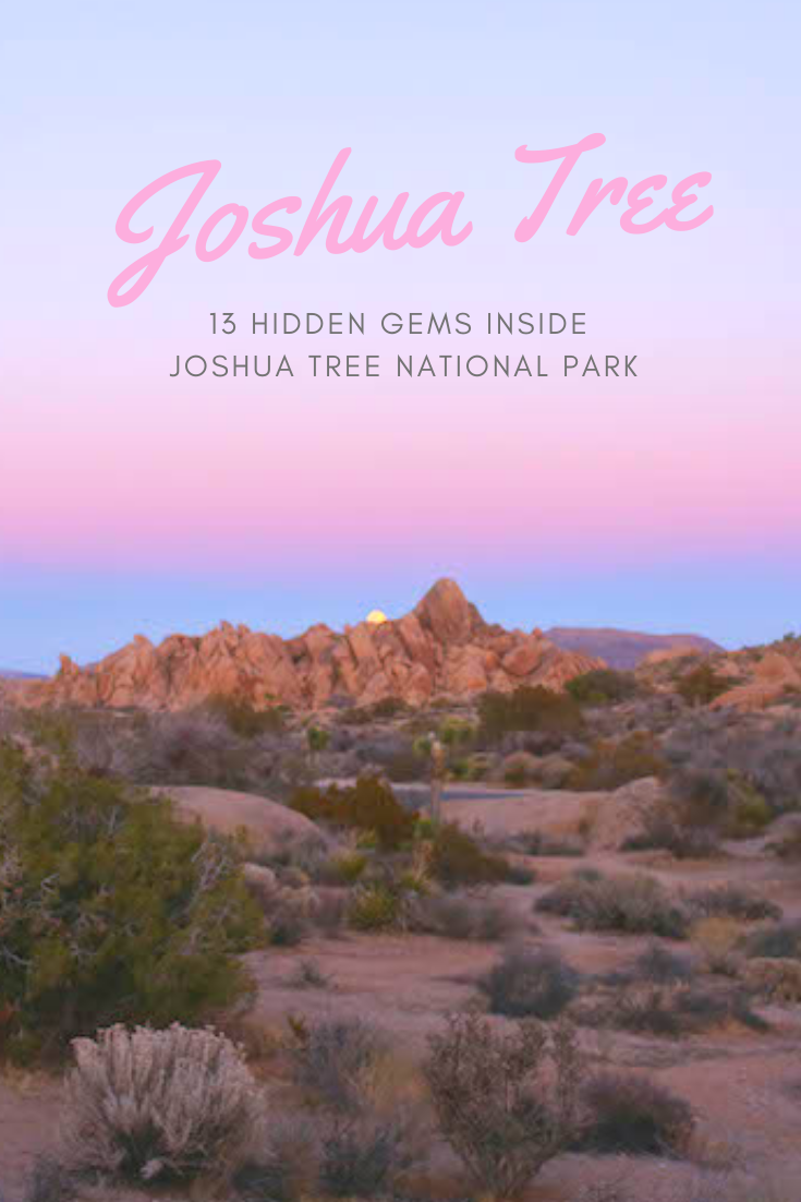 Gennifer Rose_Guide to Joshua Tree Park.png