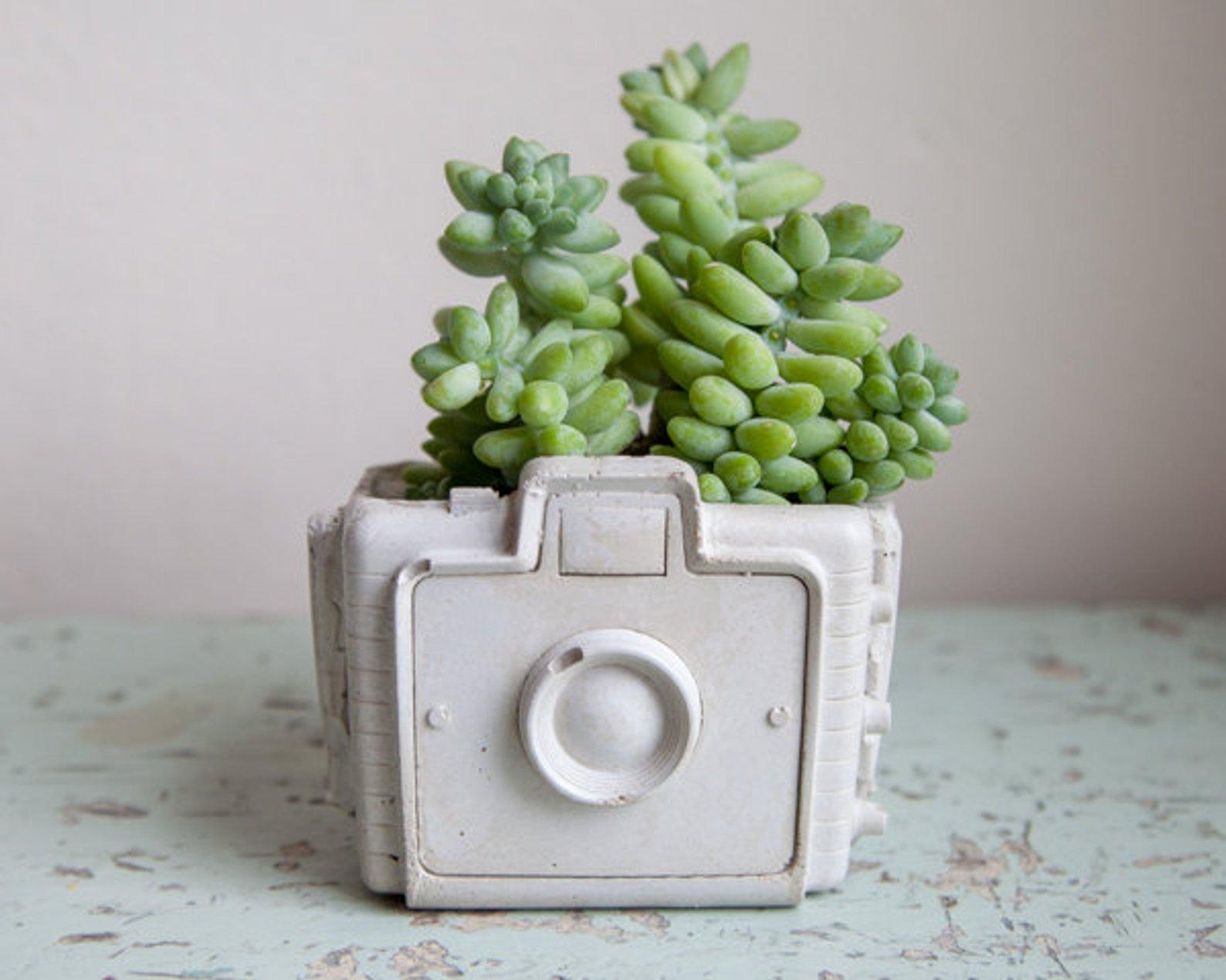 Camera Planter By Brooklyn Global