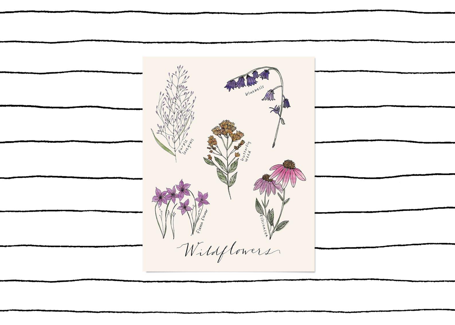 Wildflowers Print By Drawings By Renee Co