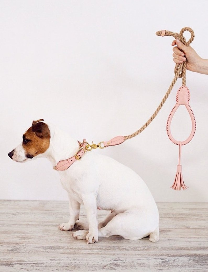 Dog Leash from Leather Cotton by Hunting Pony