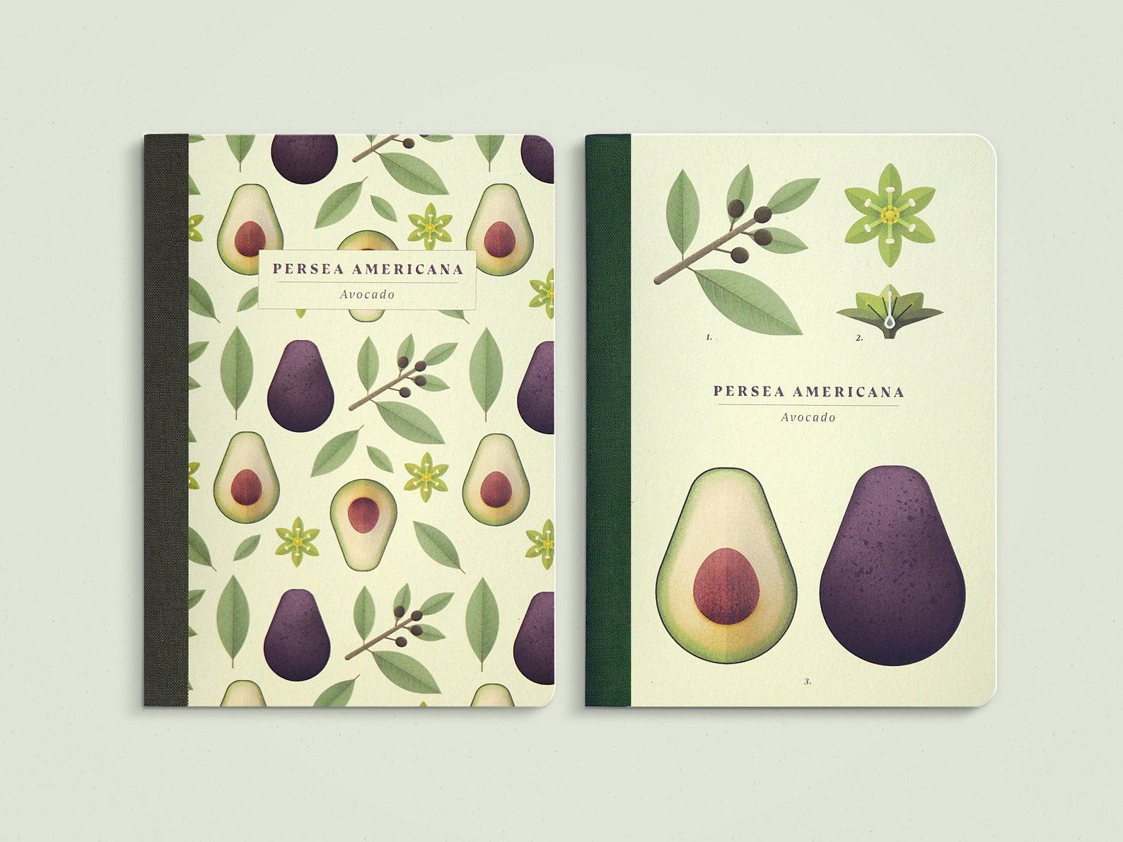 Avocado A6 Pocket Notebook Set of Two By Nature Press