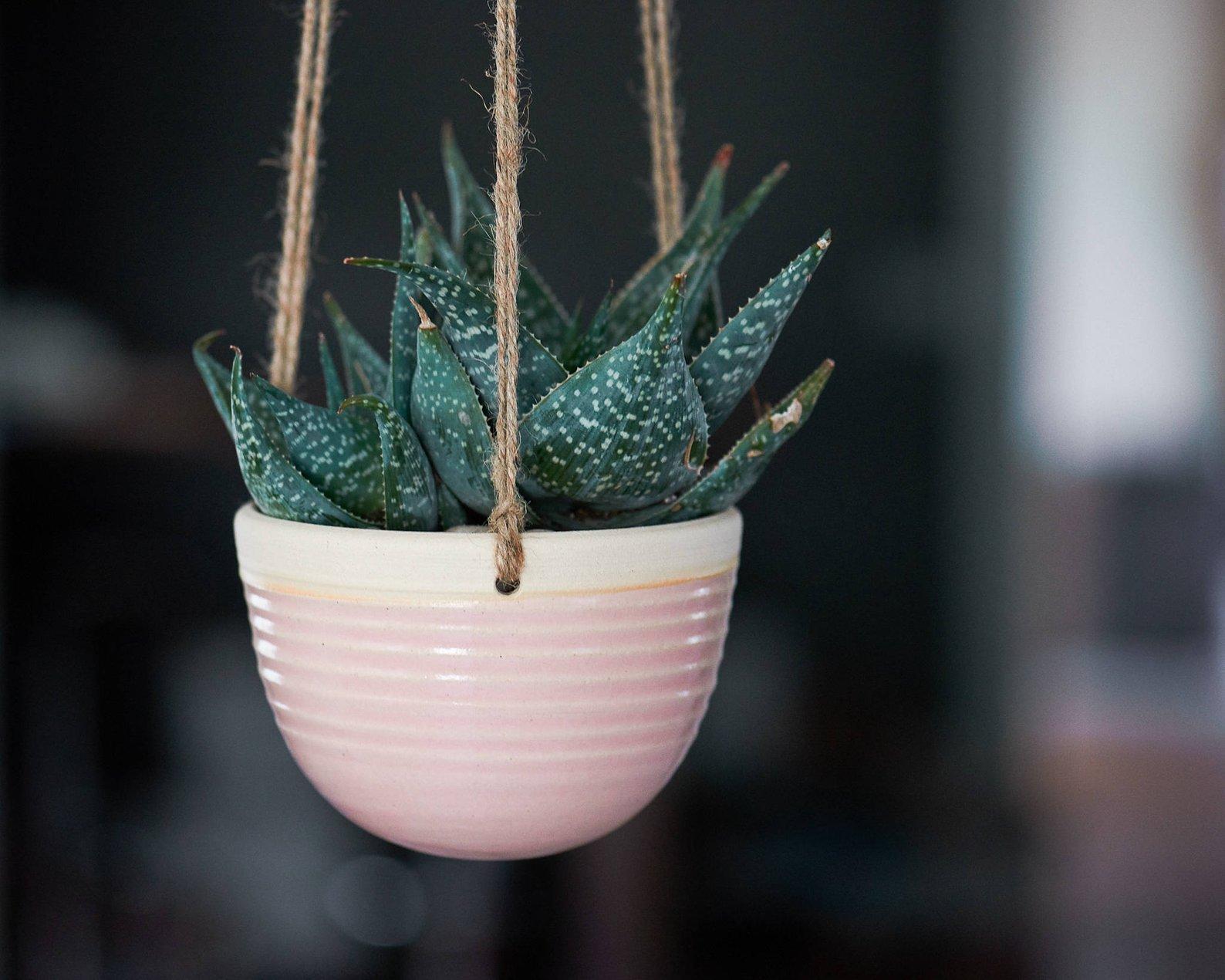 Handmade Planter in Blush Pink By Jennifer Beachy
