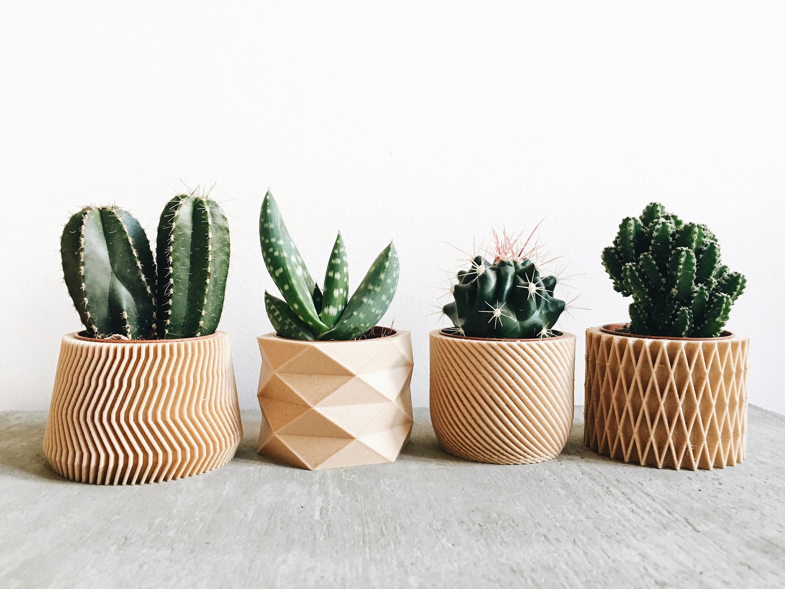 Set of 4 Small Wood Planters for Cactus and Succulents and Minimum Design