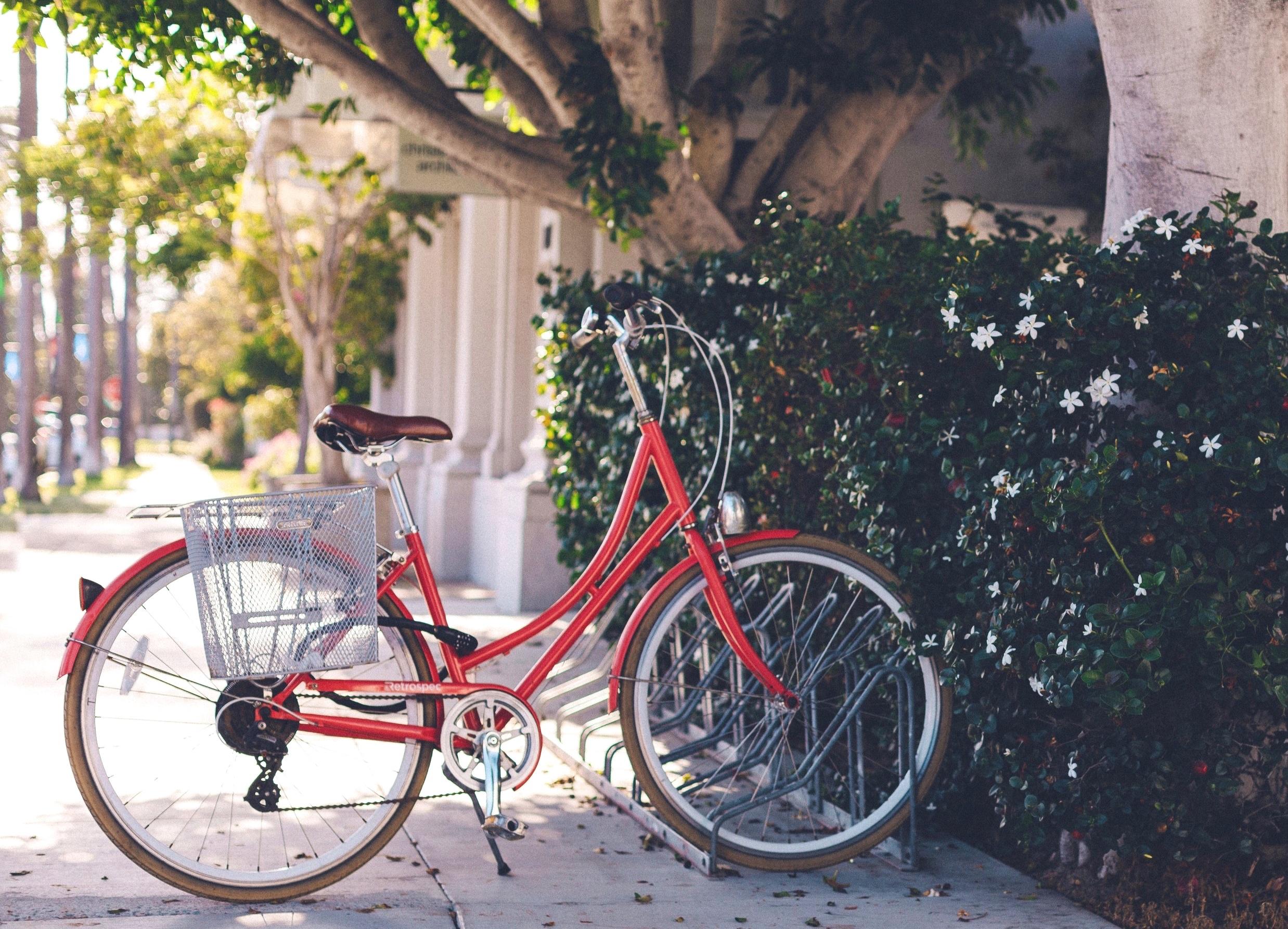 Cali Dreamin' Electric Bike Tour - La Jolla and Pacific Beach
