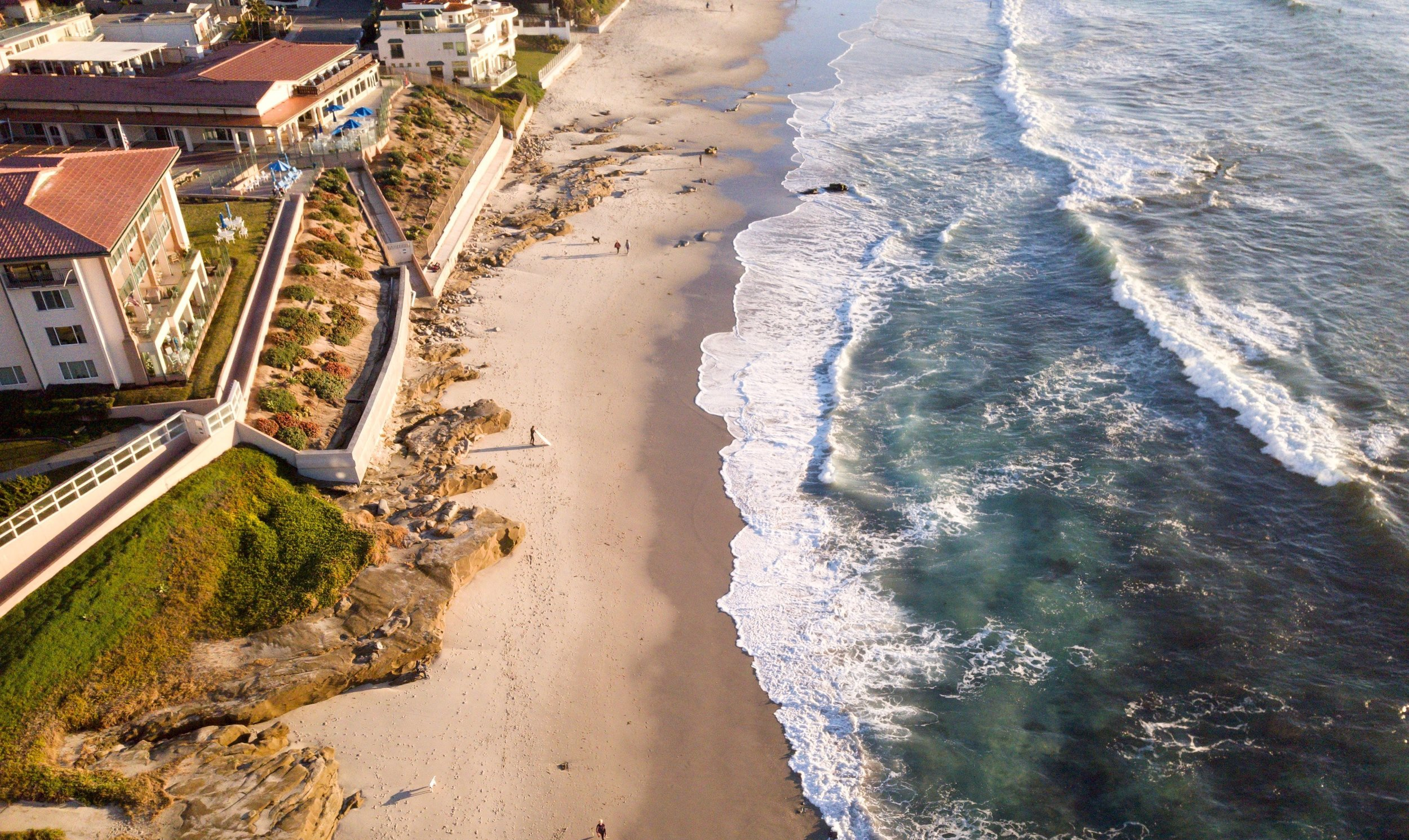 La Jolla Torrey Pine Tour - Take photos at some of the most stunning views in the San Diego area.