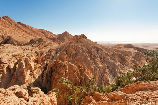 Hiking Tour from Palm Springs - Plus explore Indian Canyons by Jeep.