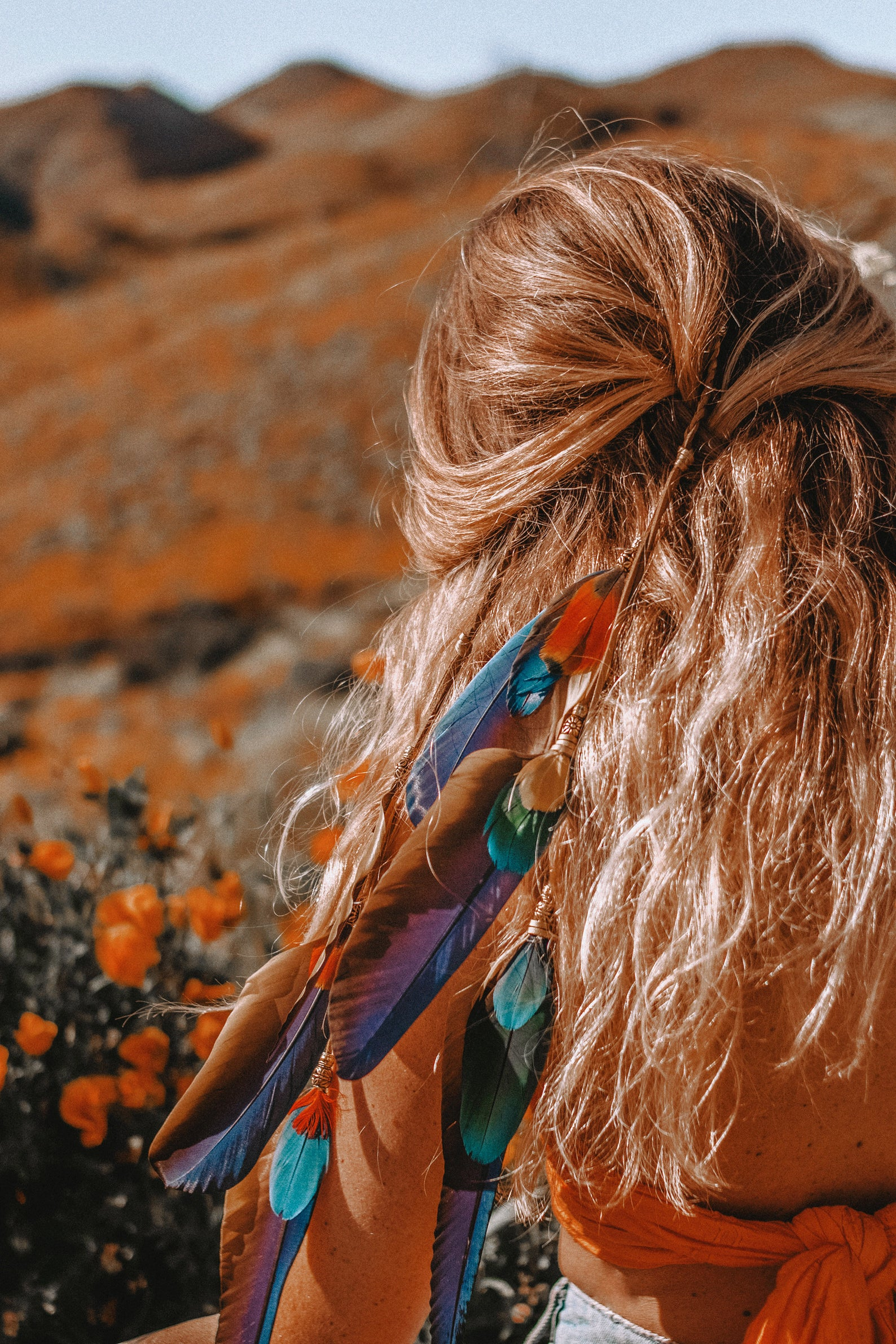 La Luna Macaw Feather Hair Clip By Wild and Free Jewelry