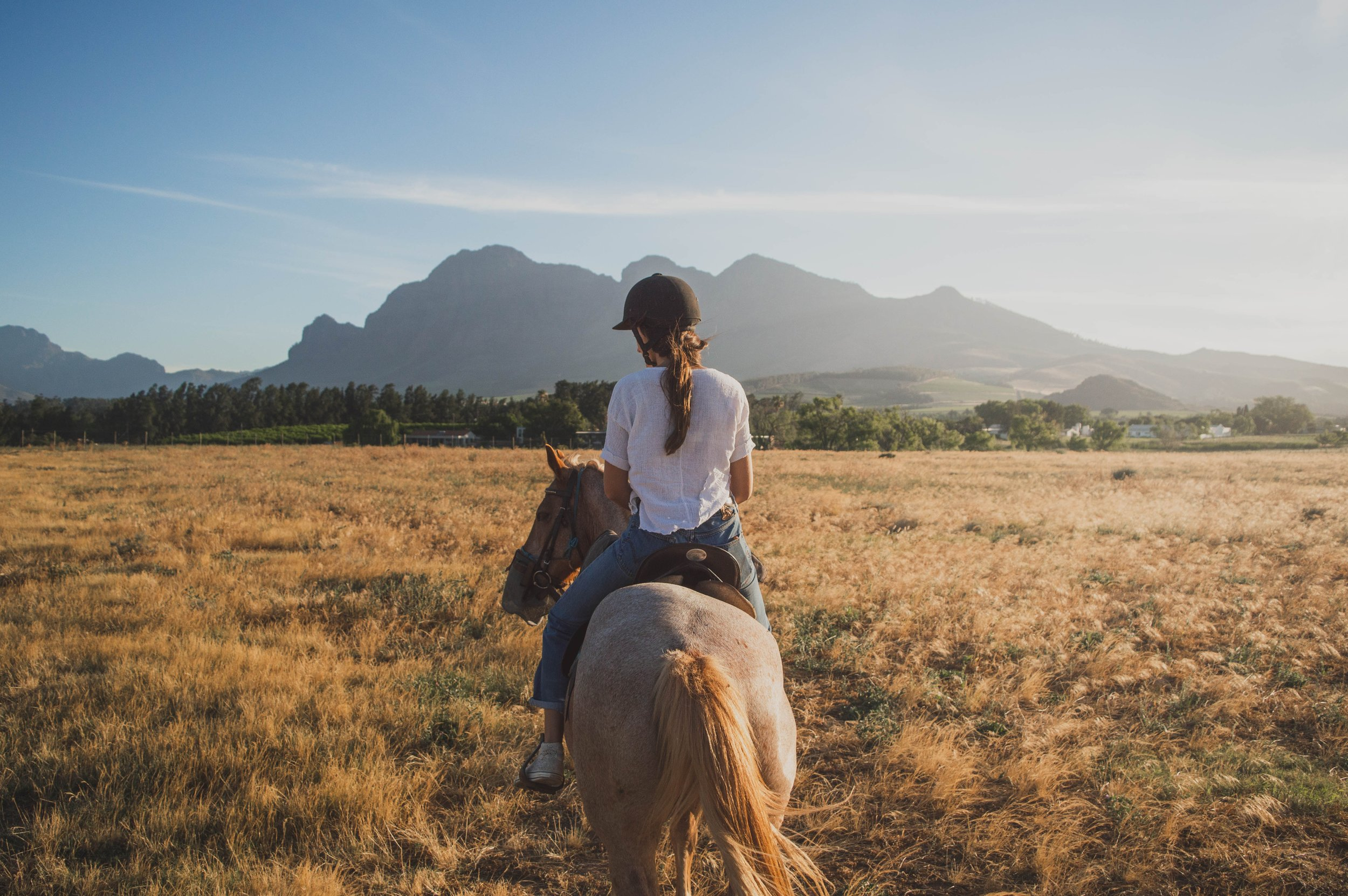 Sonoma Horseback-Riding Tour - Take in the scenery of California wine country on a horseback ride in Sonoma County.With a guide, you'll have the chance to admire the vineyards of Dry Creek Valley and the waters of Lake Sonoma as you traverse the rolling wilderness on horseback.