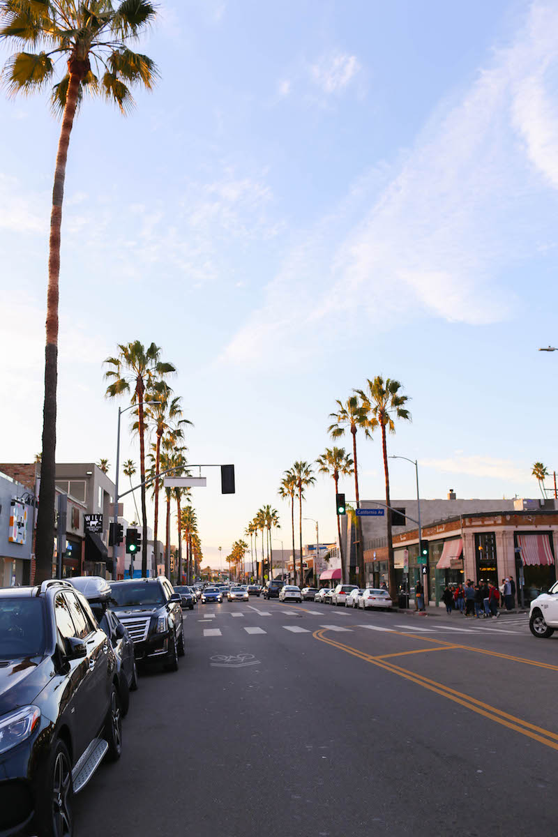 Gennifer Rose_Baby Friendly Travel Guide to Santa Monica_22.jpg