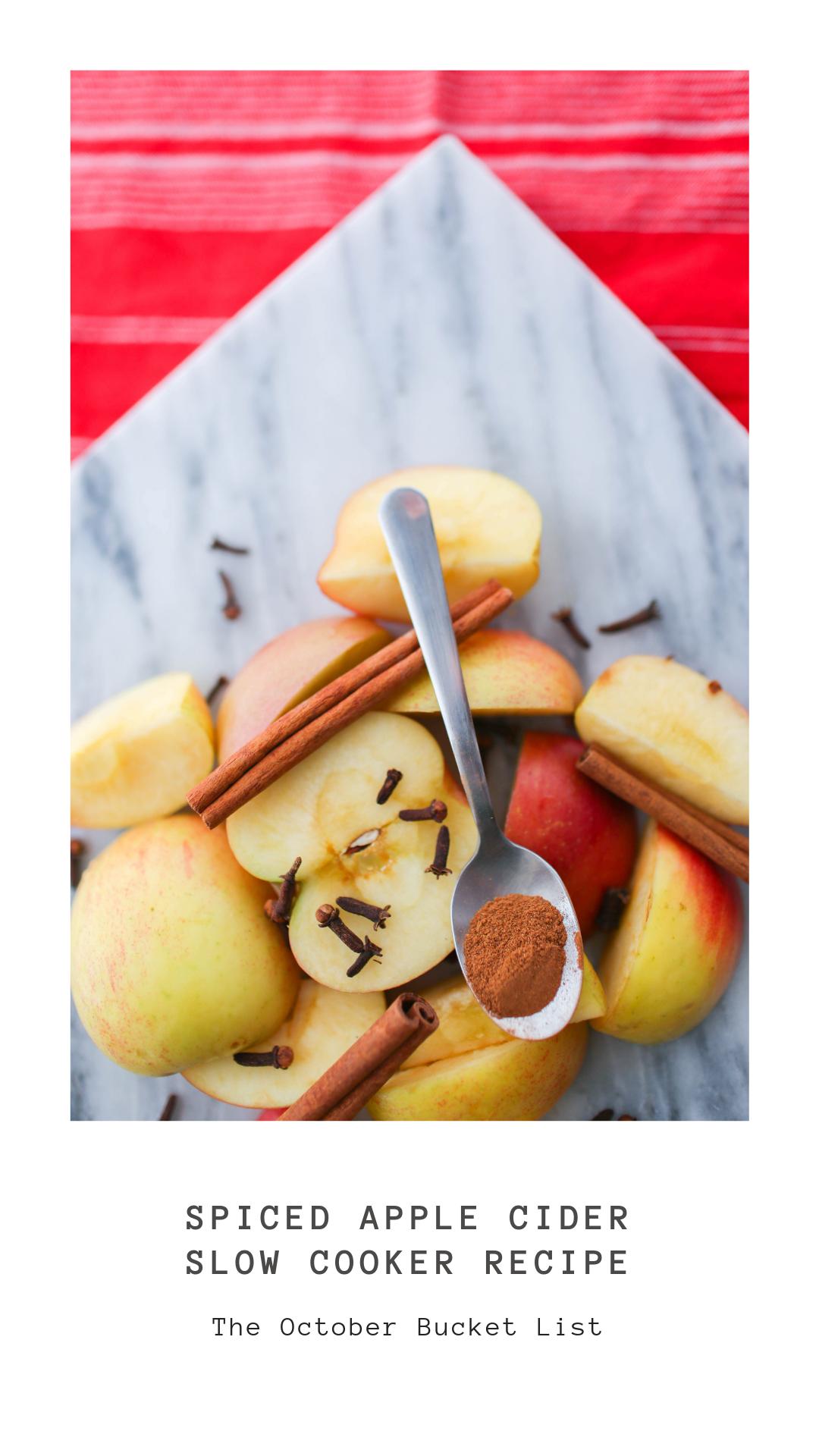Spiced Apple Cider Slow Cooker Recipe-2.png