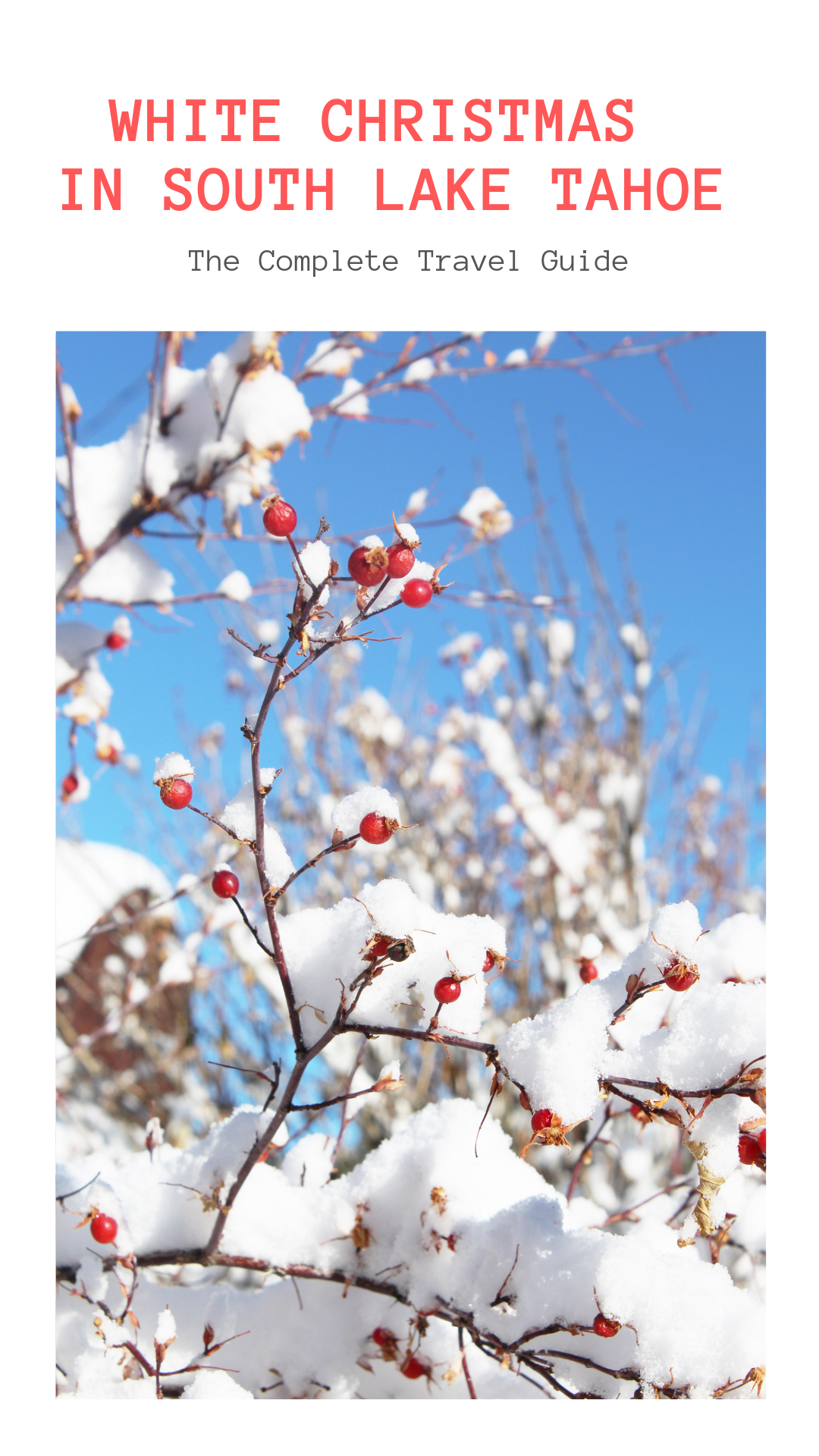 Gennifer Rose_Your Guide to a White Christmas in South Lake Tahoe Pin.png