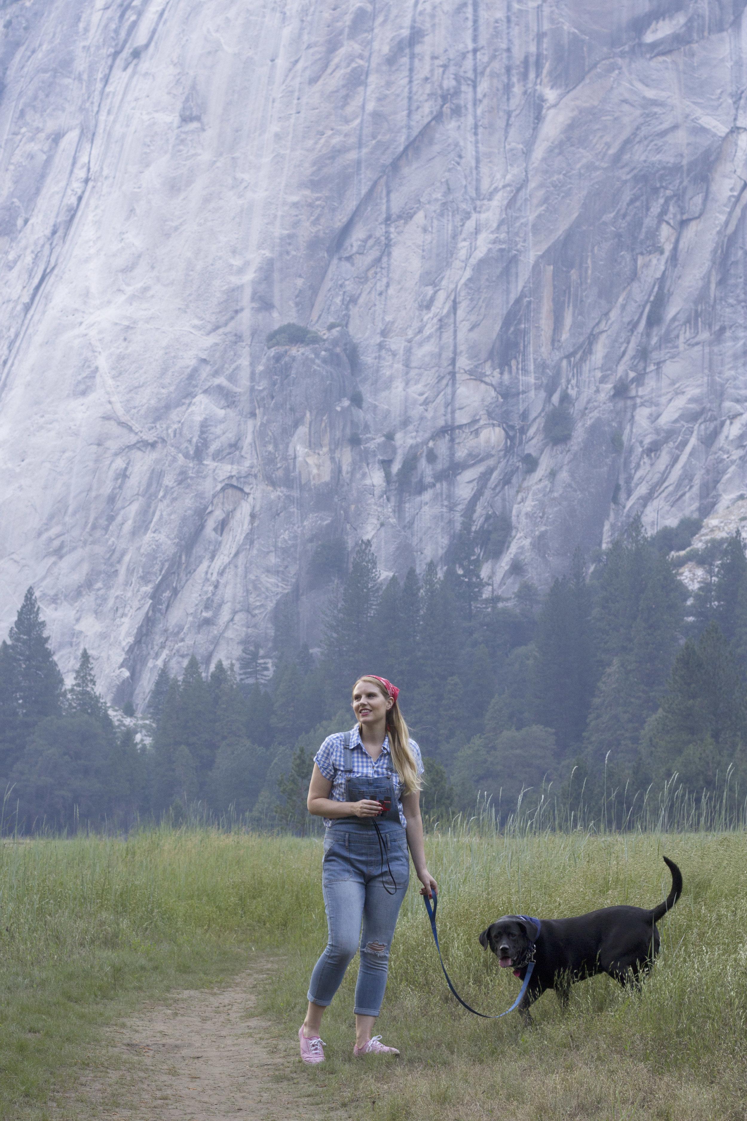 Dog Friendly Travel Guide to Yosemite -