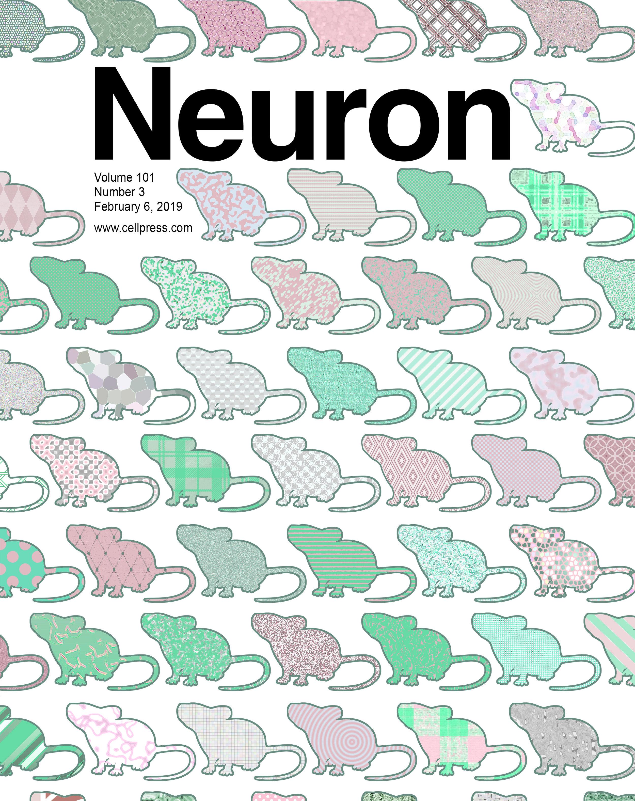 Neuron_cover_kaczorowski, neuner.jpg