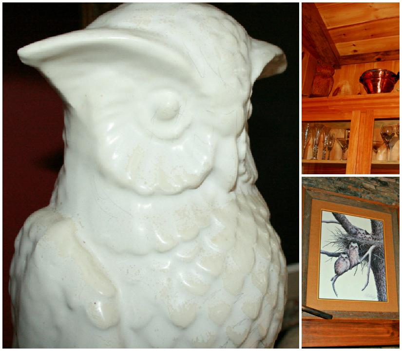 Owls1+Collage.jpg