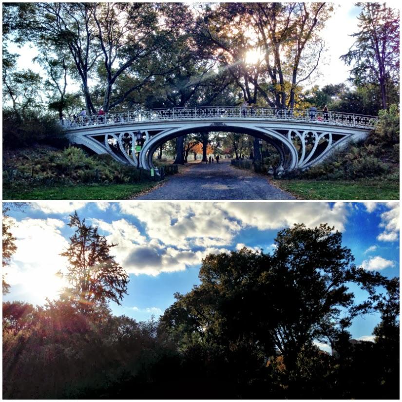 bridgy+Collage.jpg