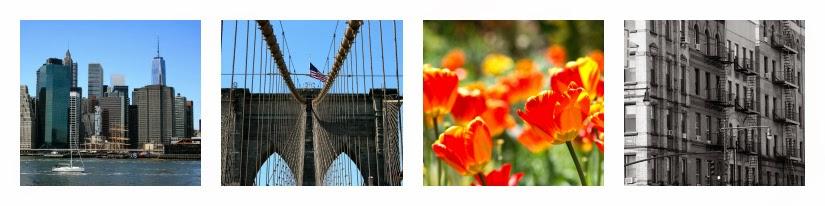 NYC+Adventures+Line+4.jpg