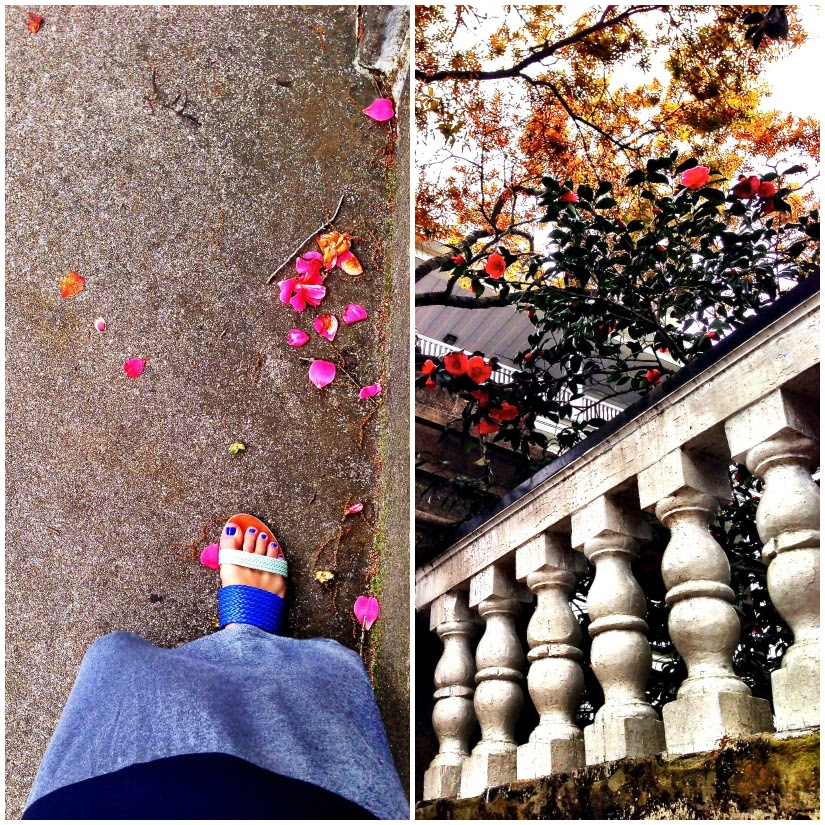 Walking+Collage1.jpg