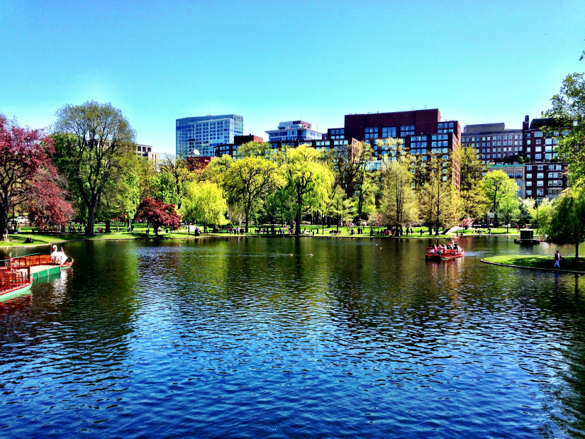 bostoncommon1.jpg