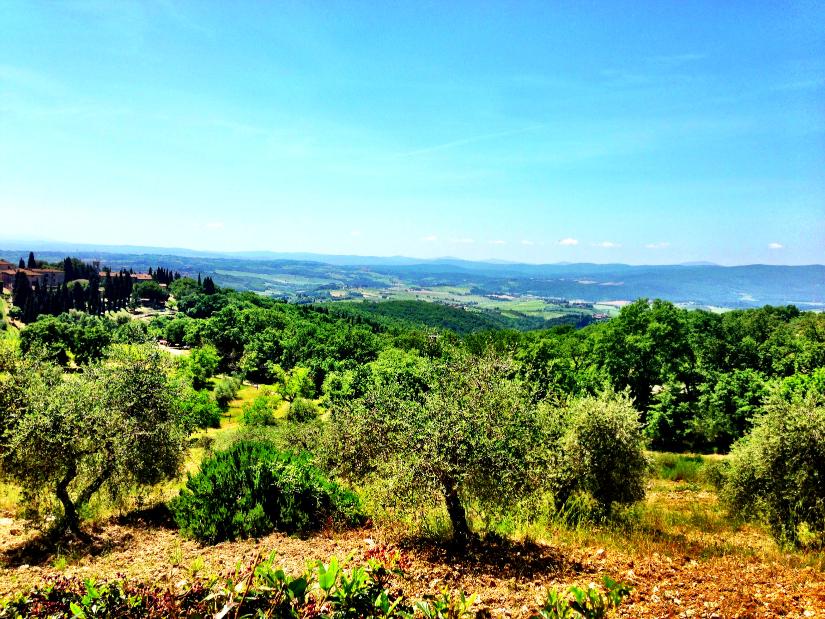 valleys1.jpg