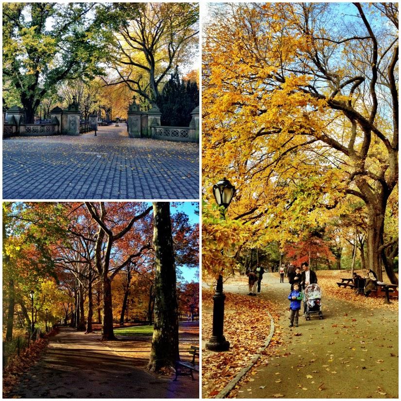 walking1+Collage.jpg