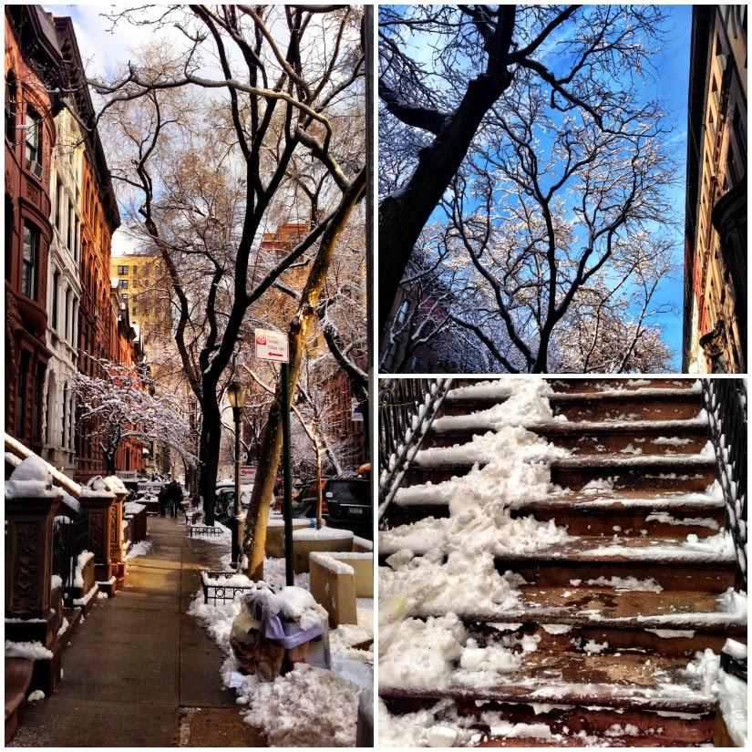 snowy+collage1.jpg
