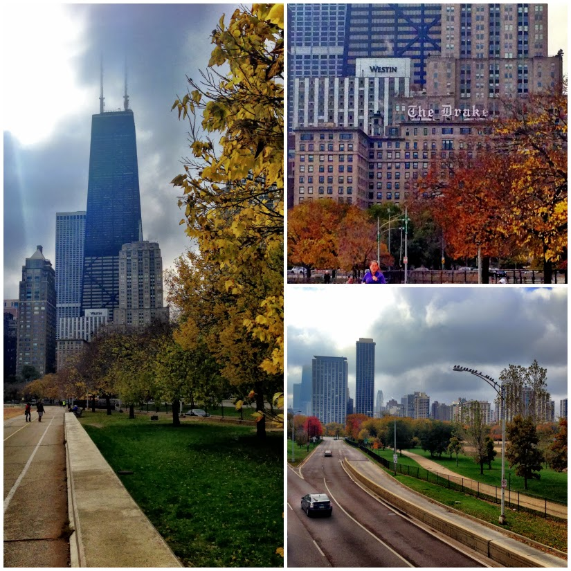 sears+tower+Collage1.jpg