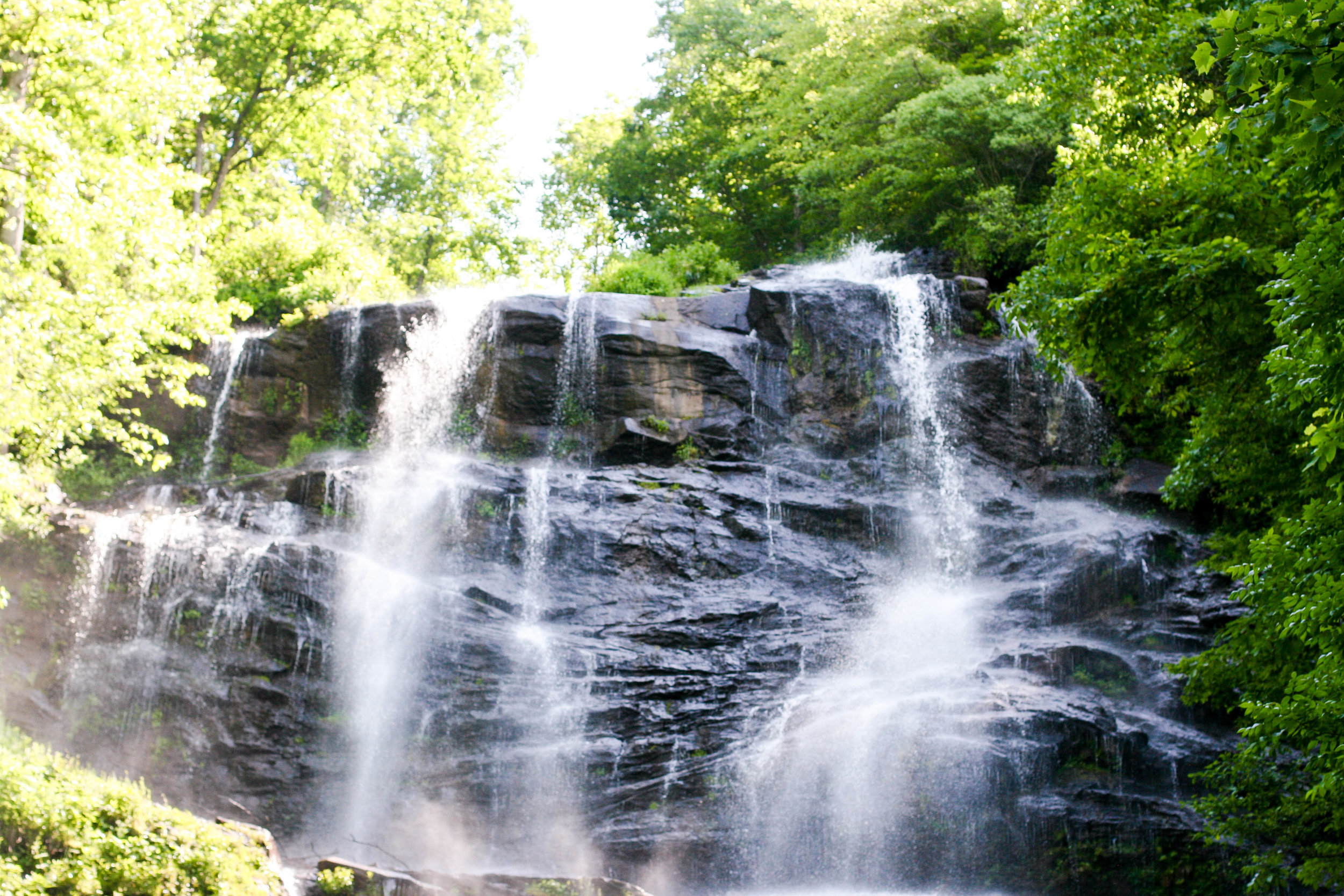 Amicalola Falls State Park, in all it's glory.