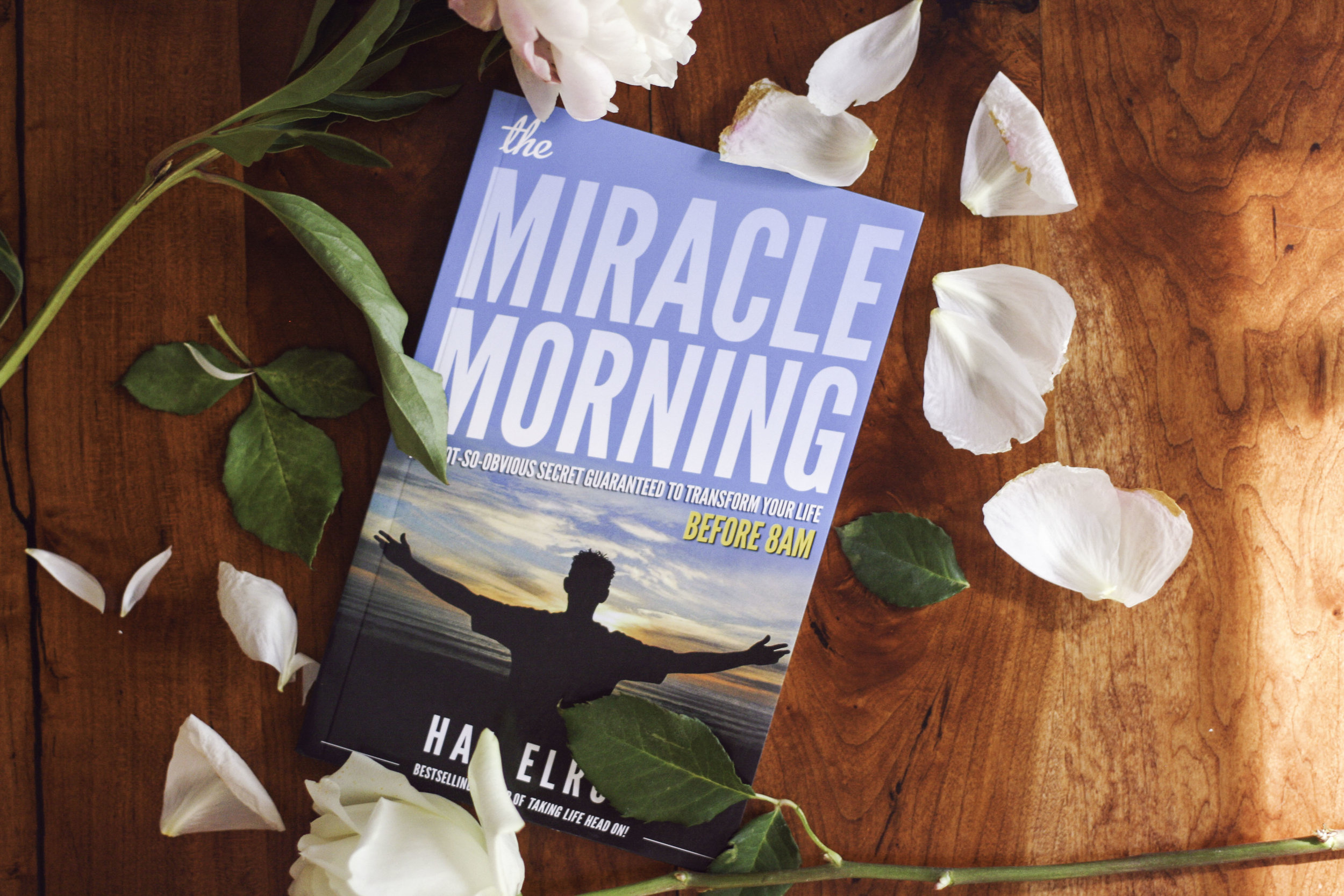 The Miracle Morning.jpg