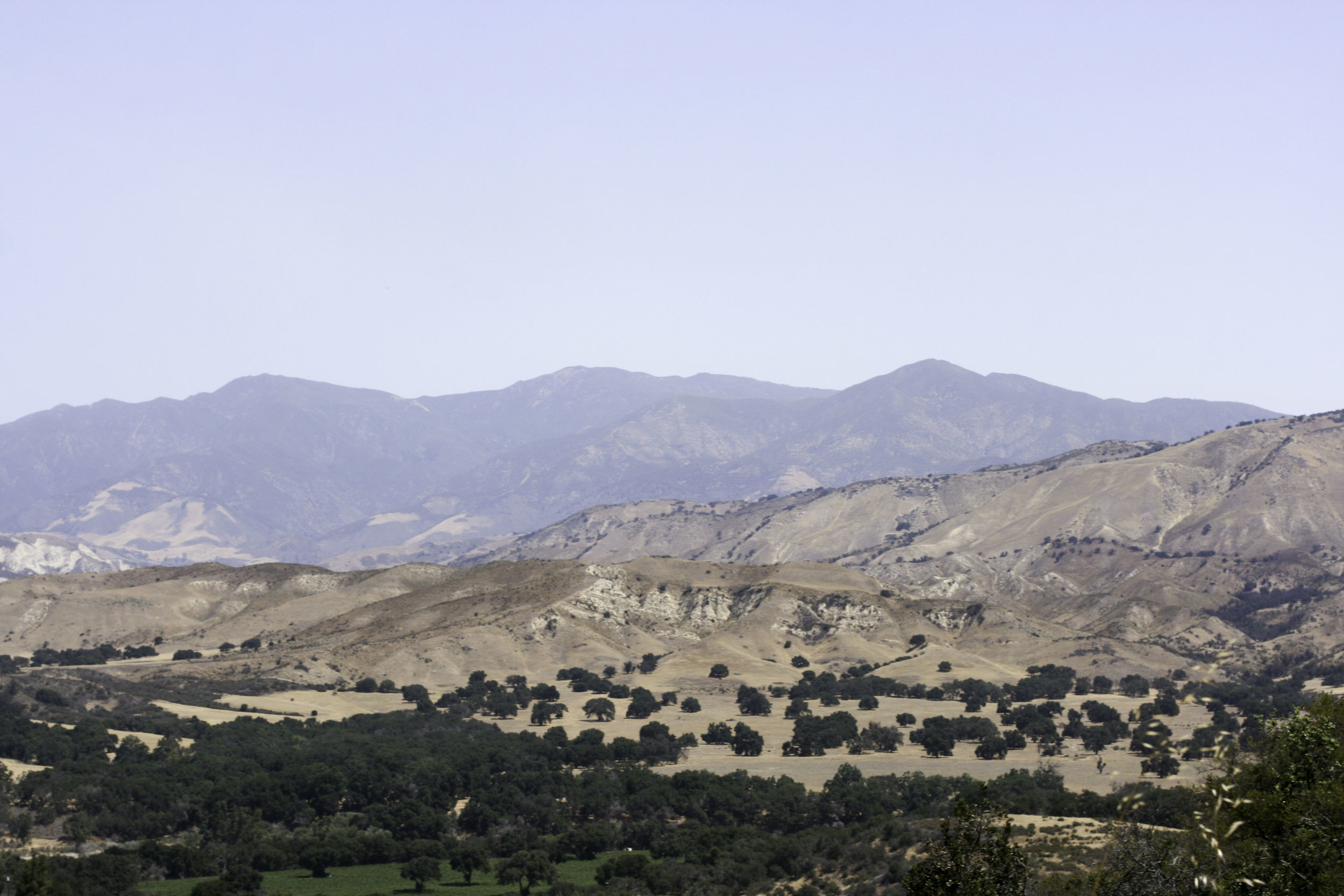 Santa Ynez1.jpg