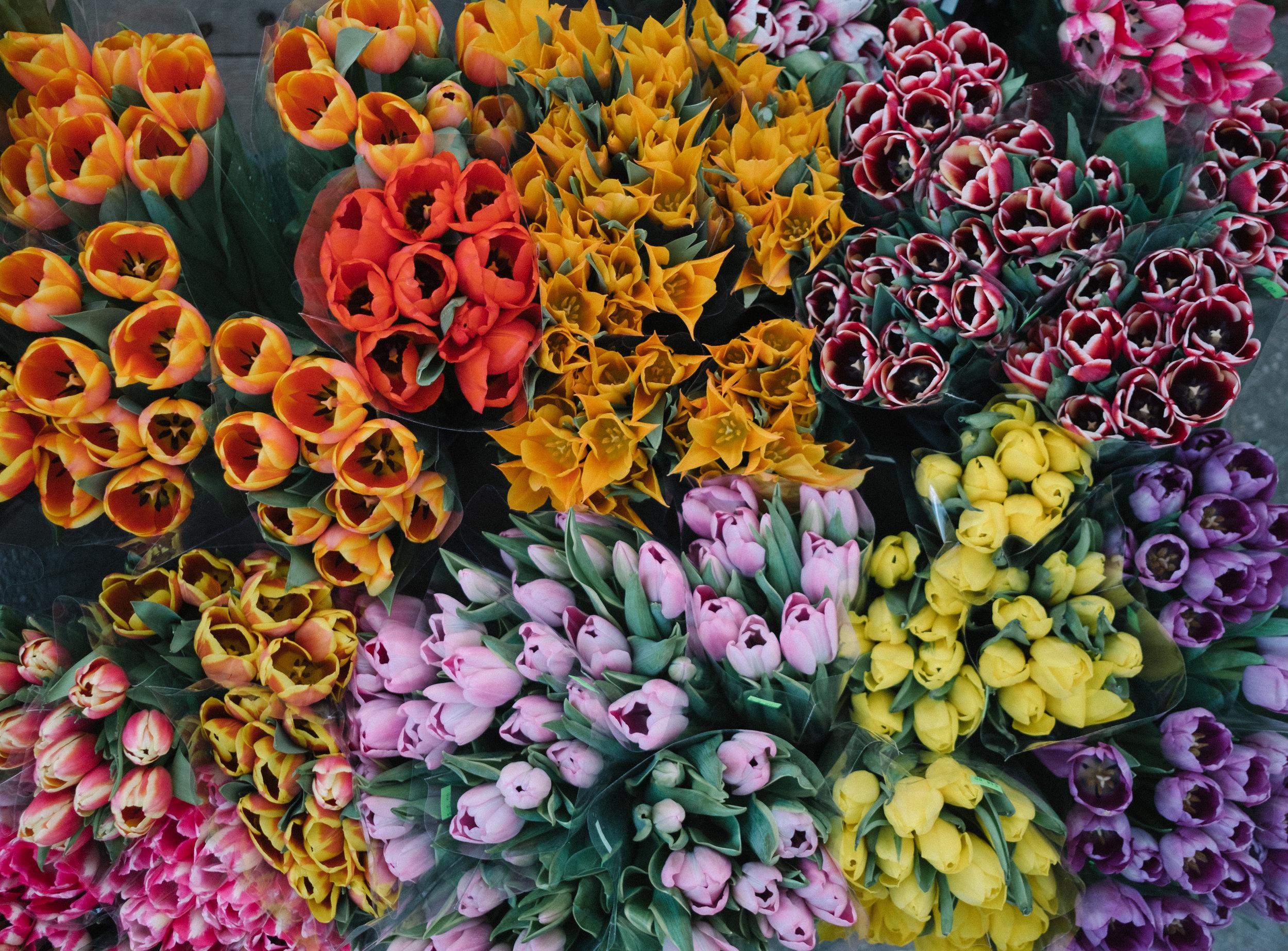 New York City Bodega Flowers