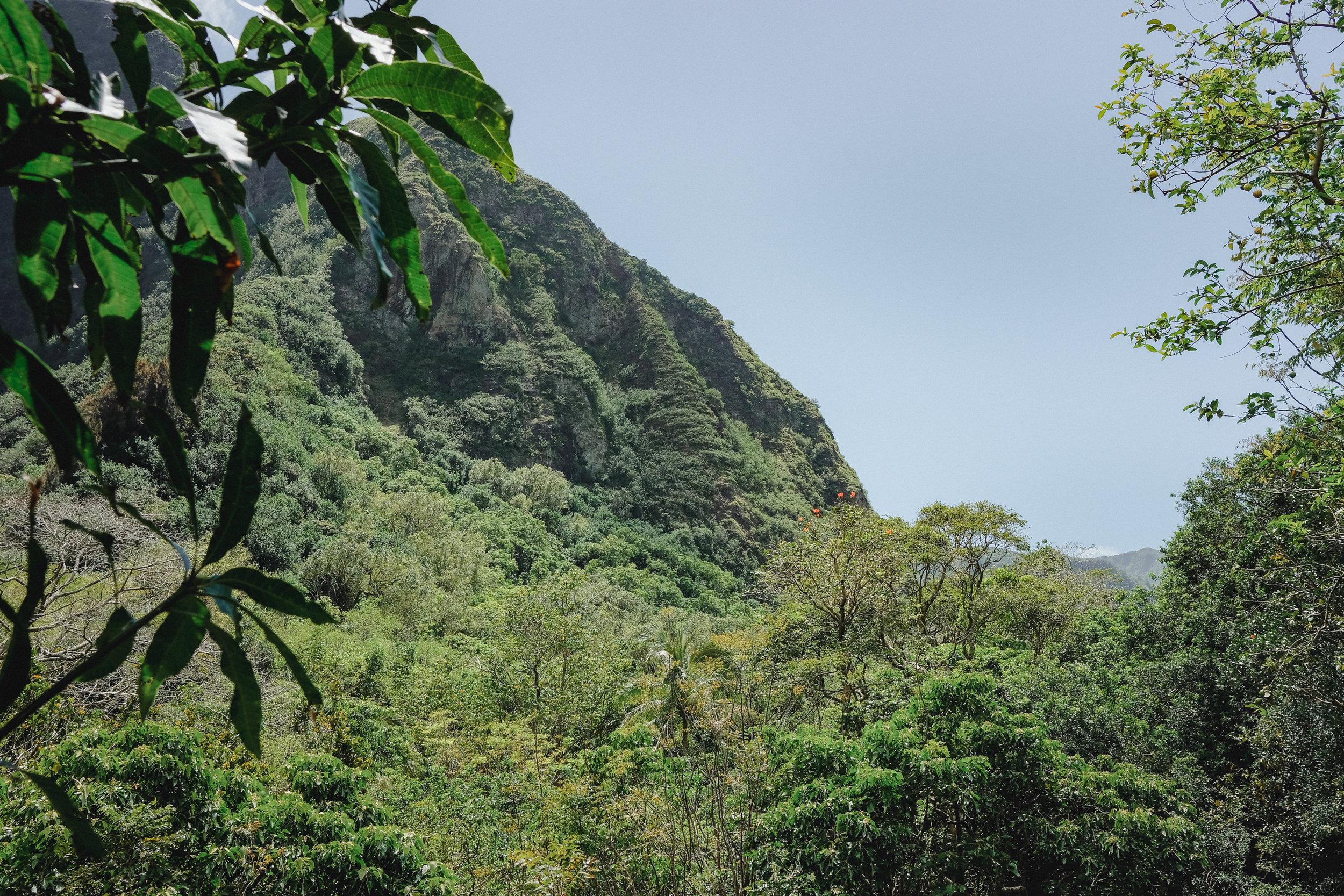 Hawaii -34.jpg