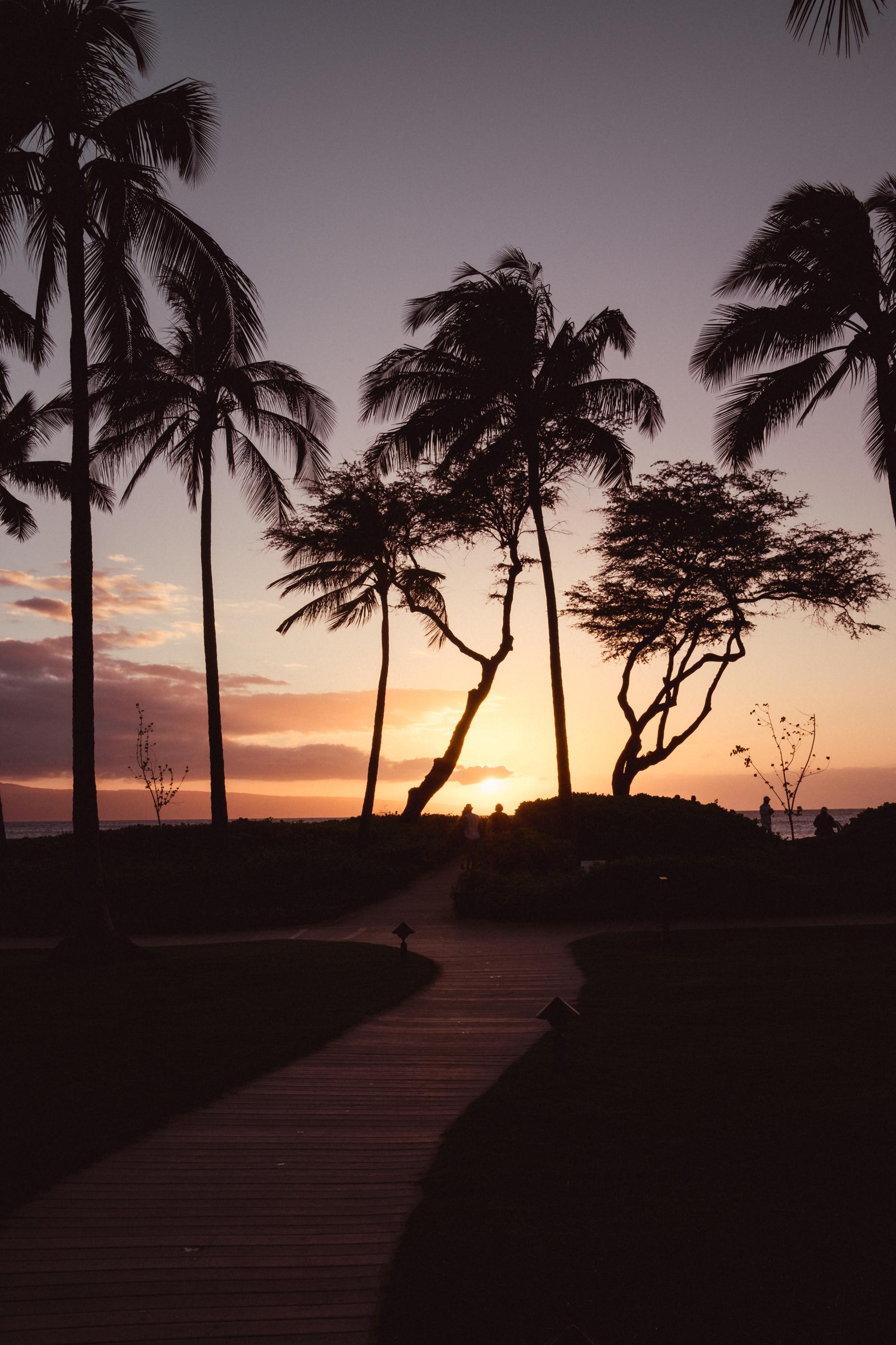 Hawaii -31.jpg