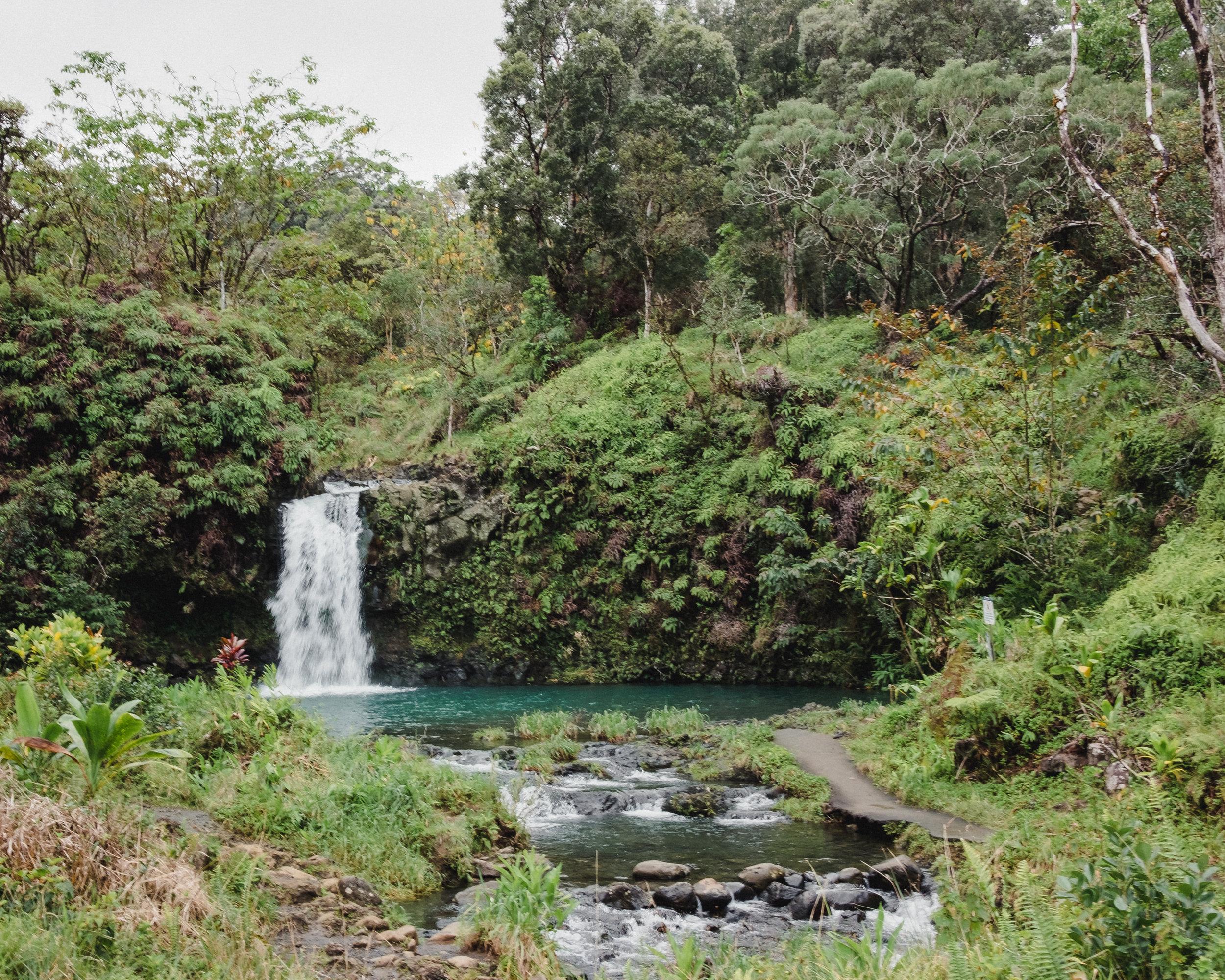 Hawaii -41.jpg