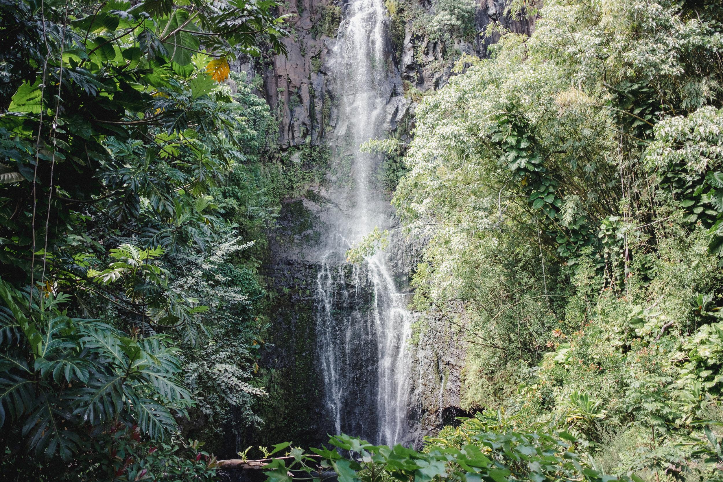 Hawaii -1-2.jpg