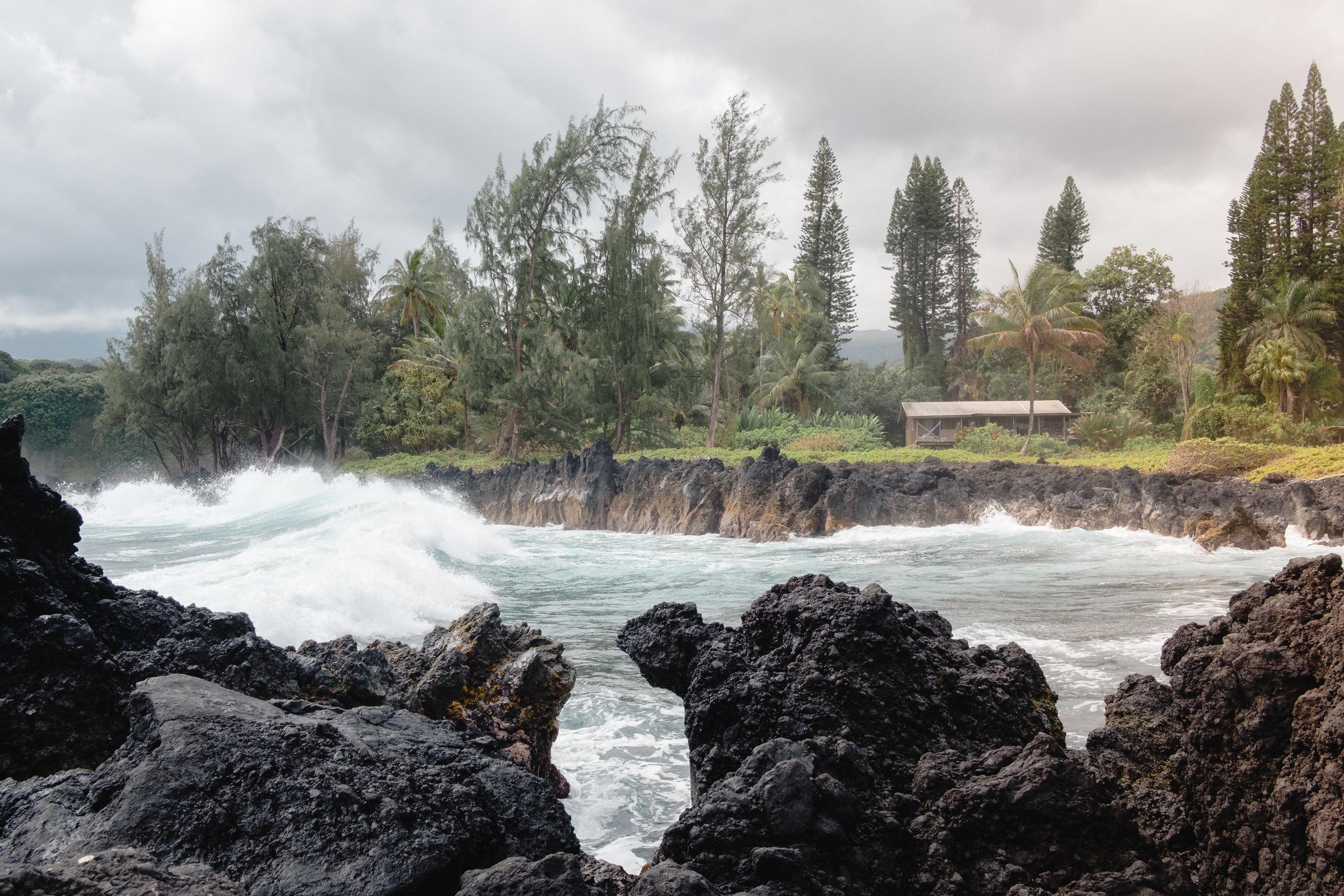 Hawaii -38.jpg