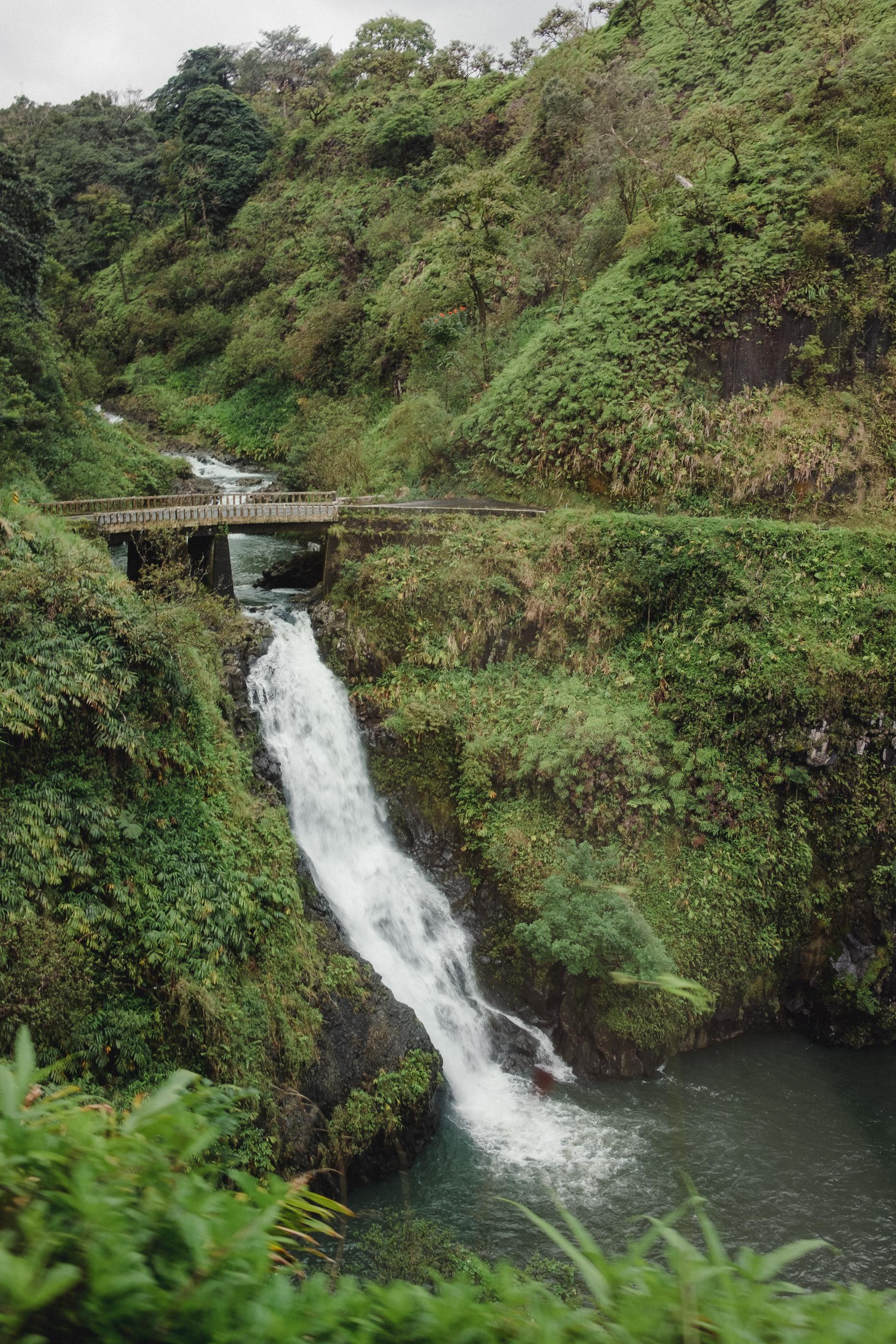 Hawaii -40.jpg