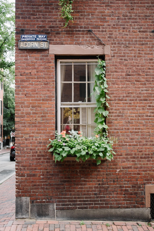 Boston-34.jpg