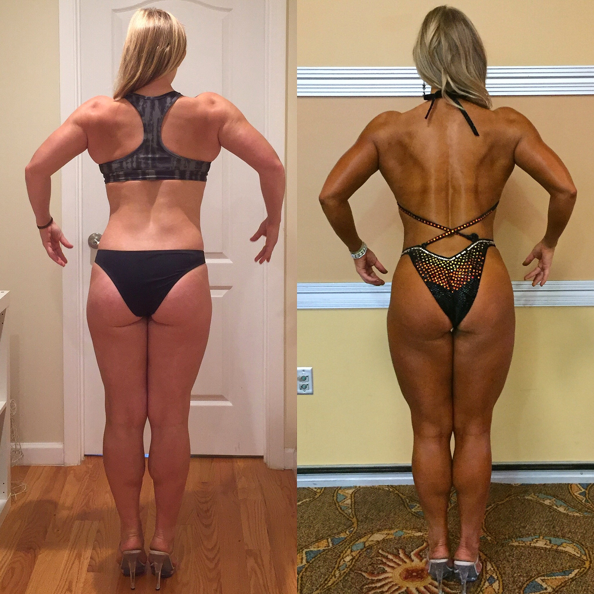Back Comparison | My Engineered Prep