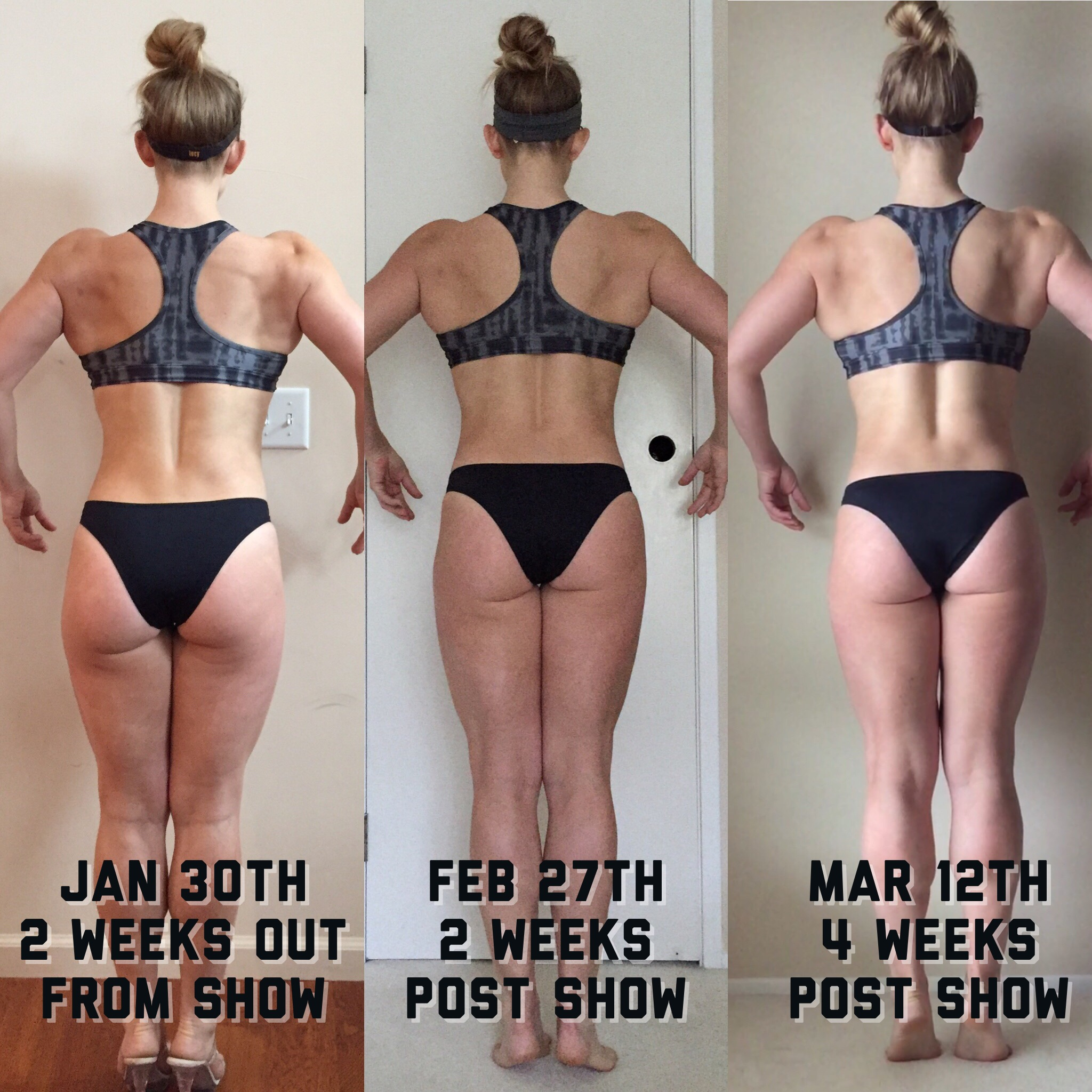 Reverse Diet - Back Month 1 | My Engineered Nutrition