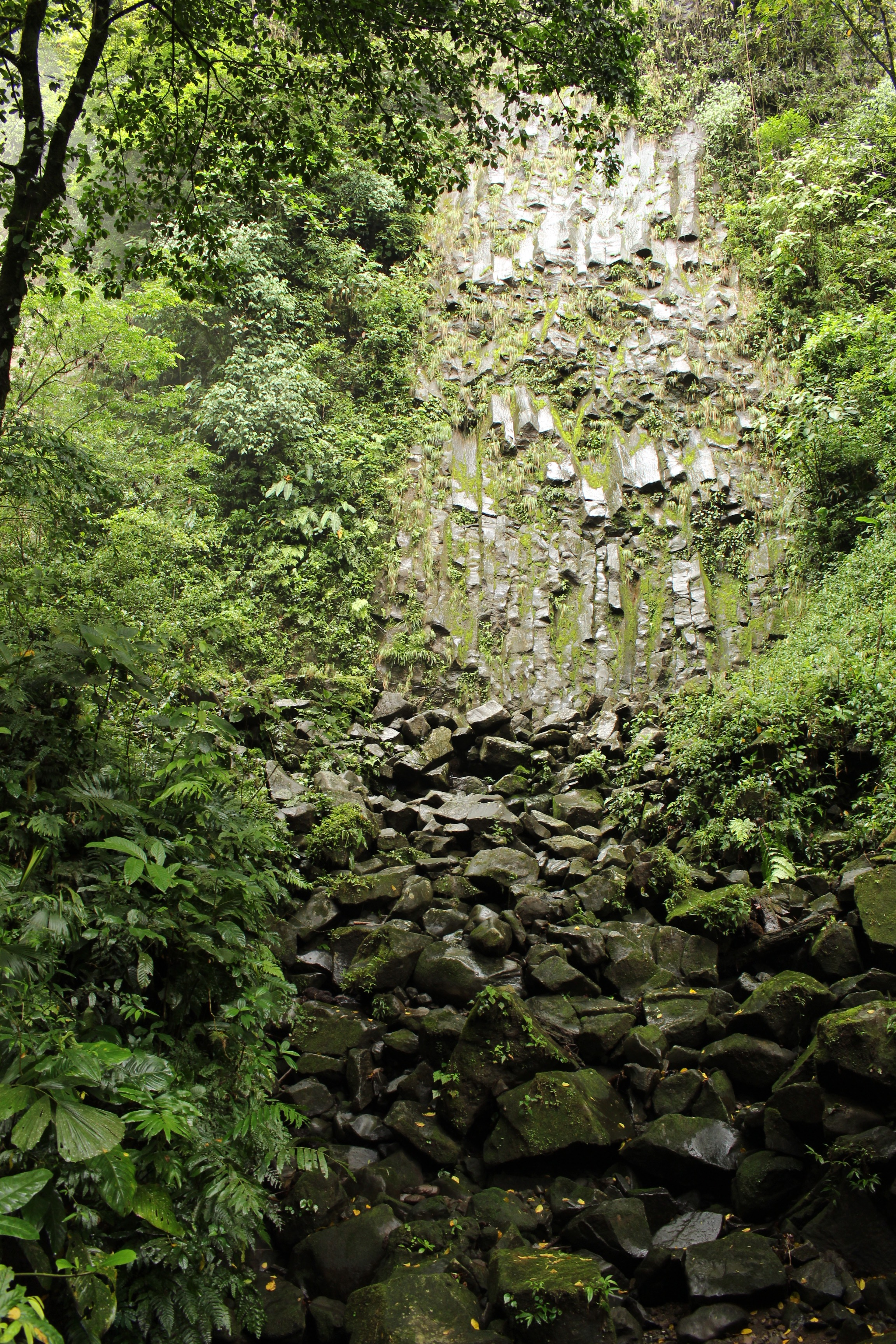 La Catarata Rio Fortuna (La Fortuna Waterfall)