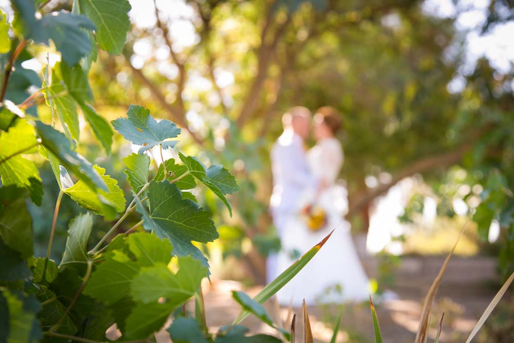 Noland Wedding 0401.jpg